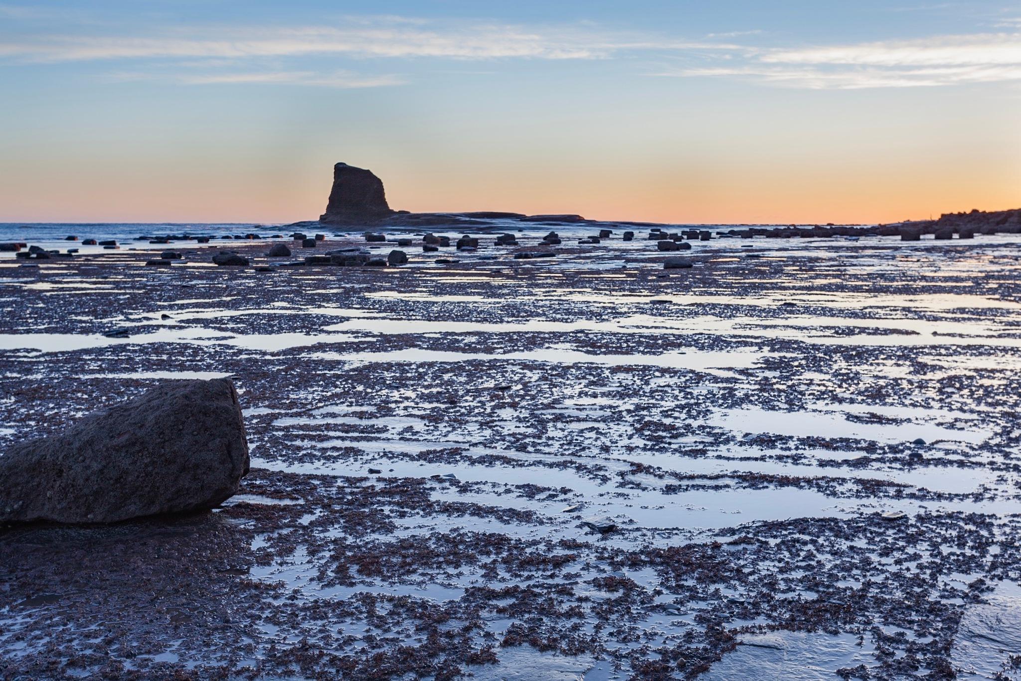 Black Nab, low tide by Carl Mickleburgh