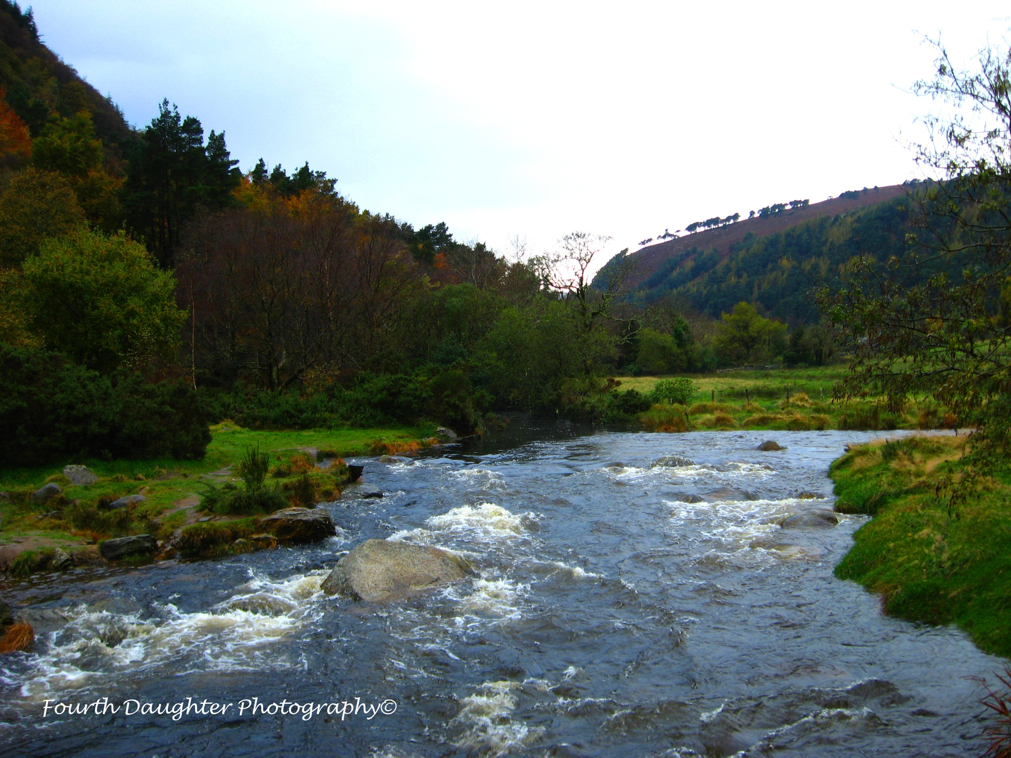 Glendalough Nature Preserve by Fourth Daughter Photography