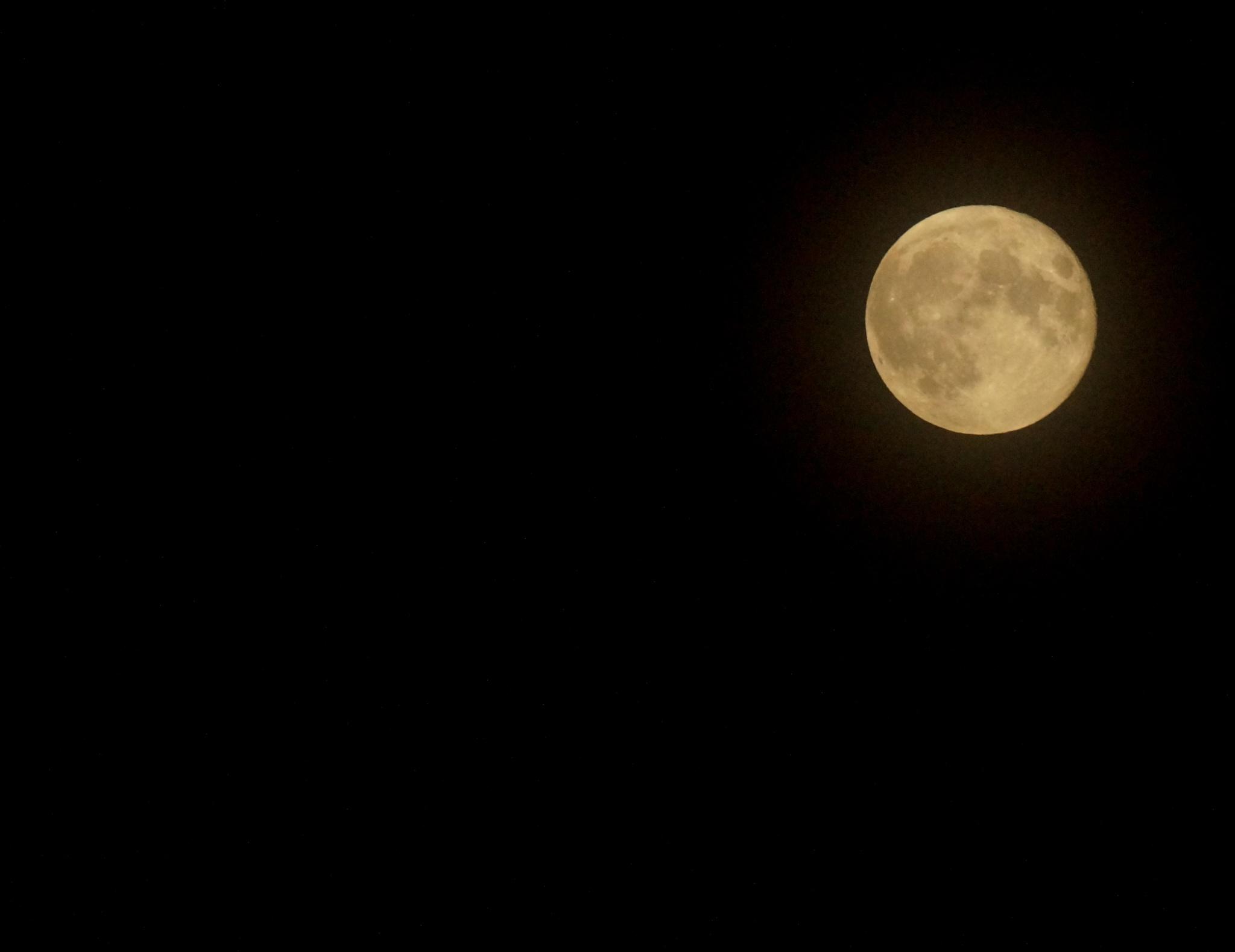 Moon by Brandonc434