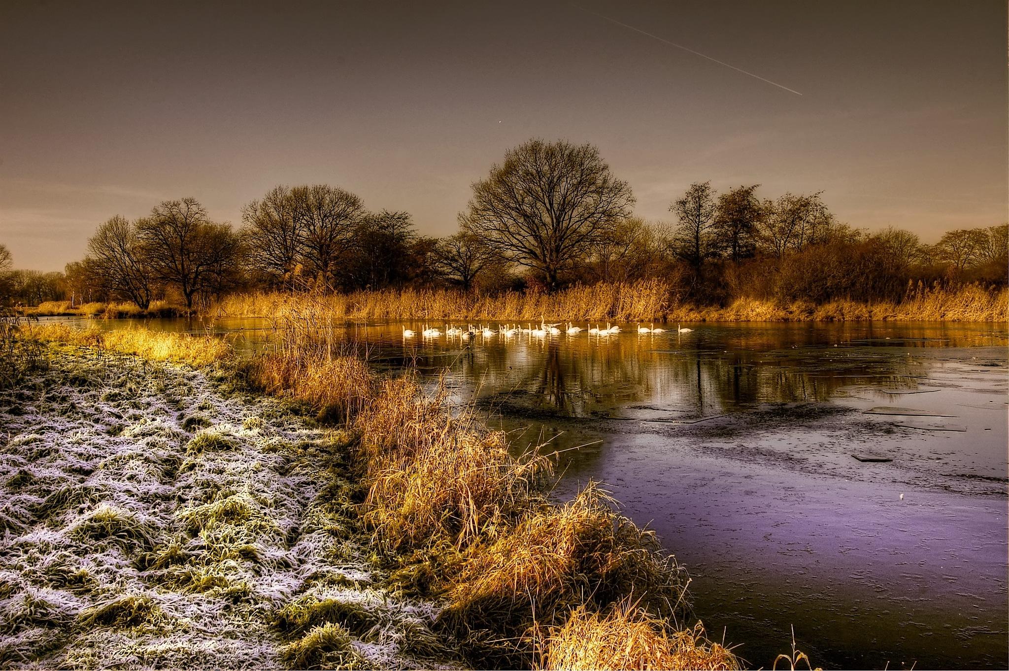 swansea by kordi