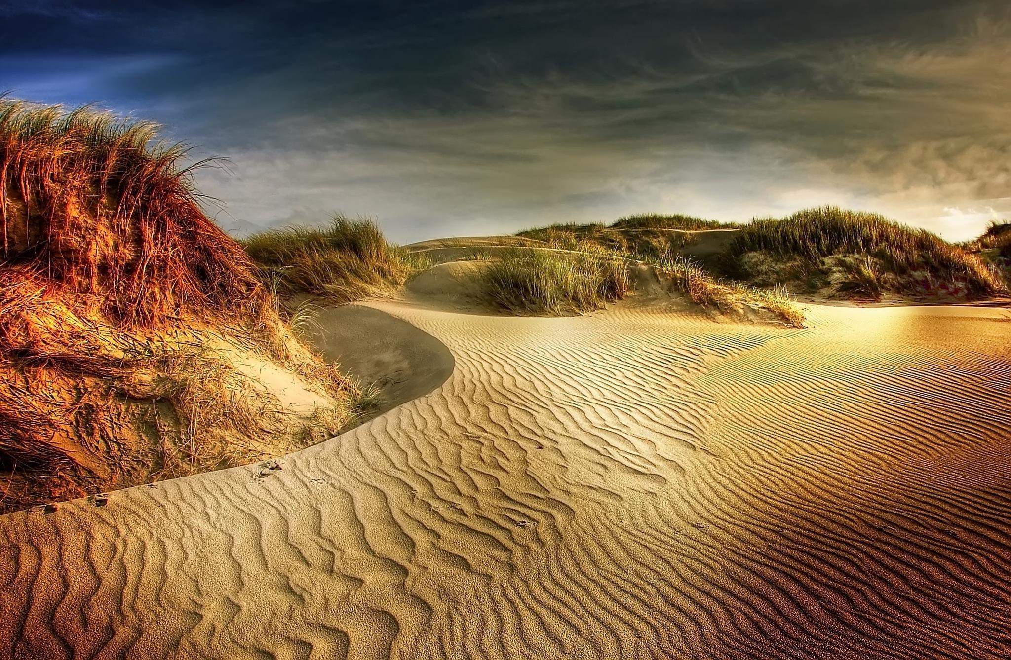 dune by kordi