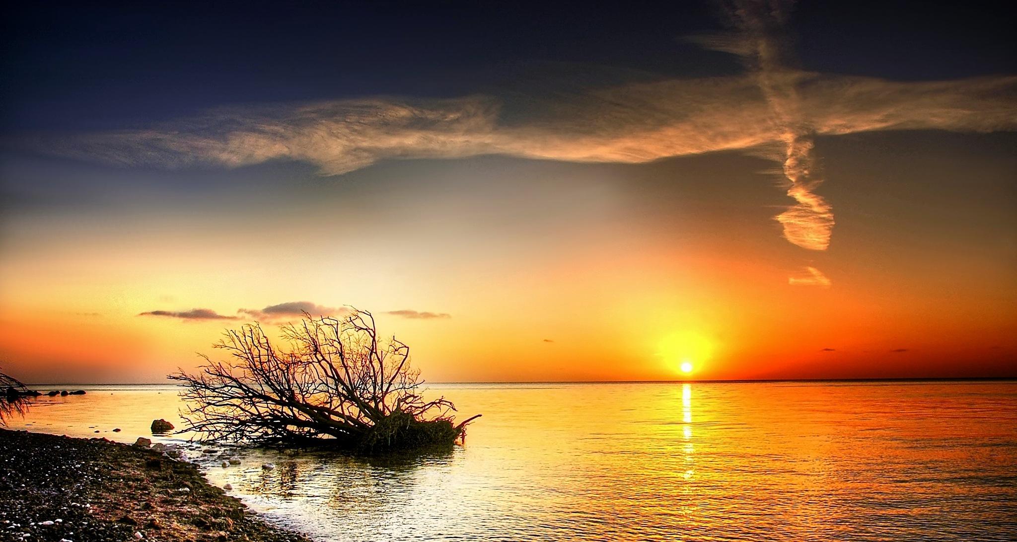 isle of moen by kordi