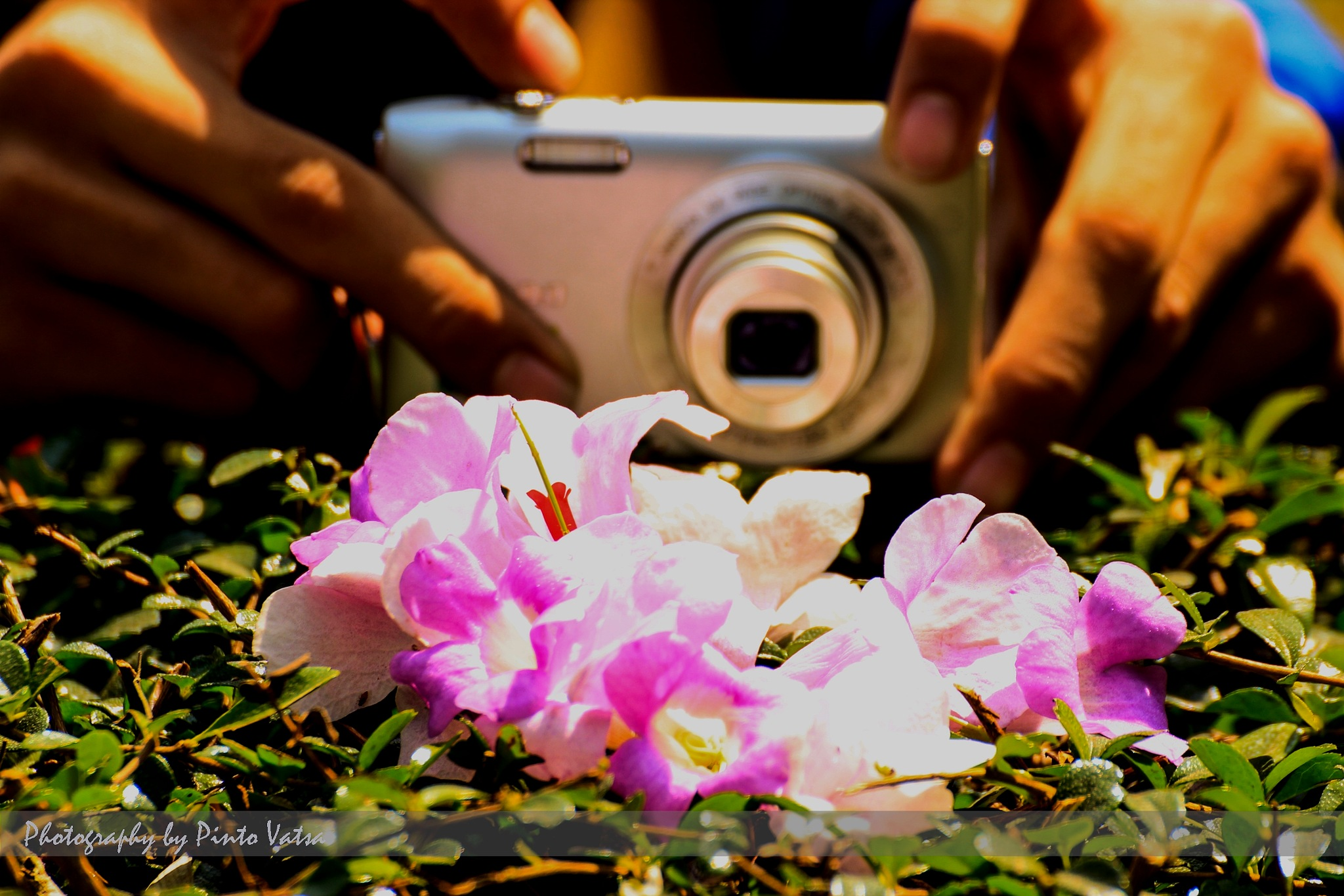Photo in a photo by Arunesh Singh