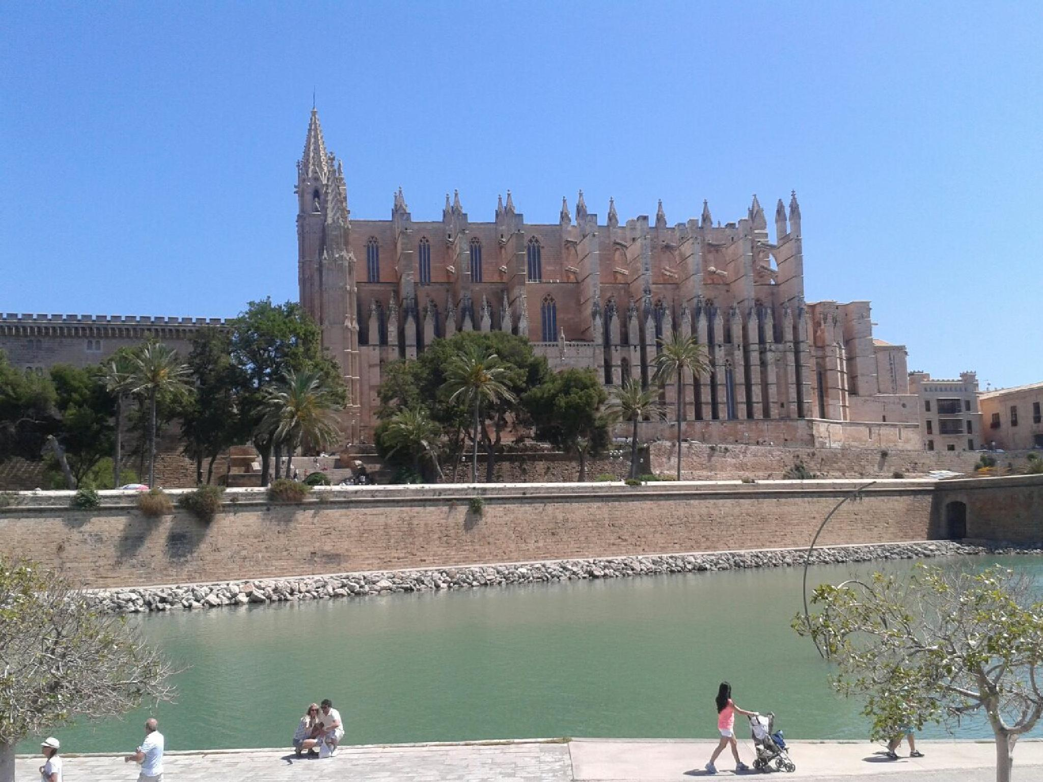 Palma Cathedral by Shirley Hayes Wooding
