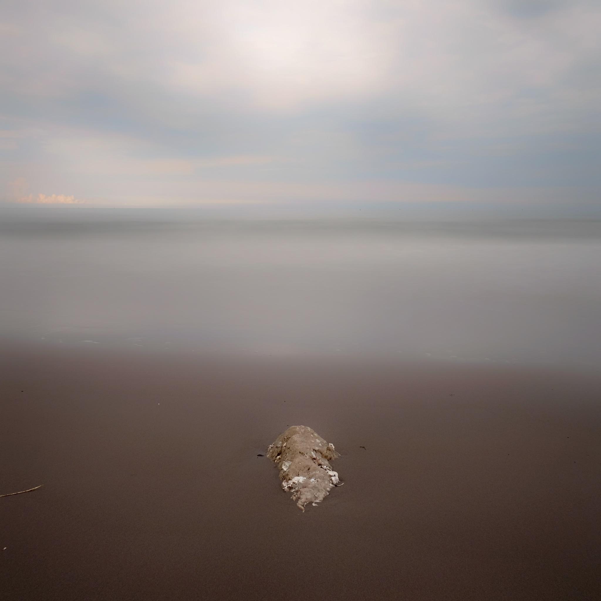 Simplicity by Pietro Abbagnato