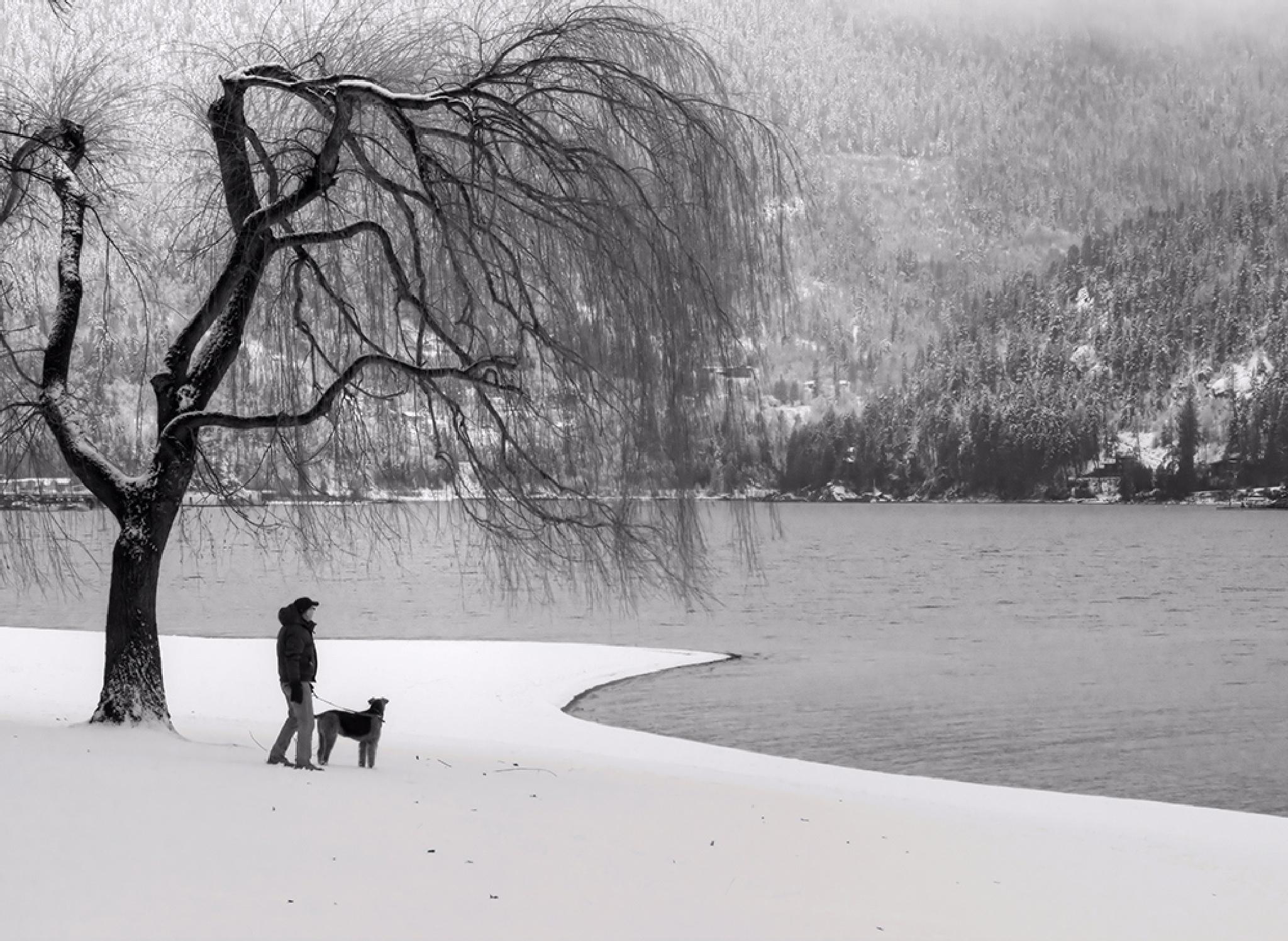 Lakeside park by MadeleineGuenette