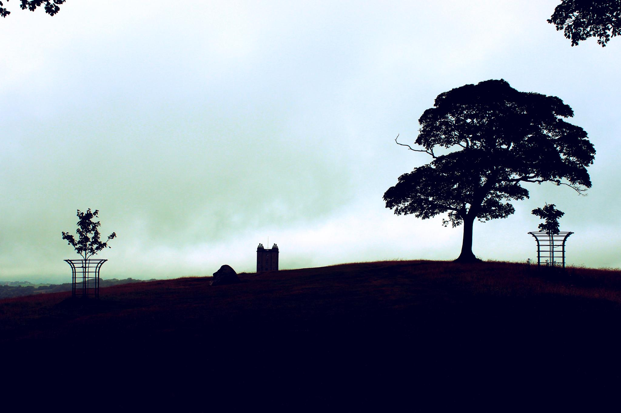 Tree with Tower in mist by Paul Stobbs