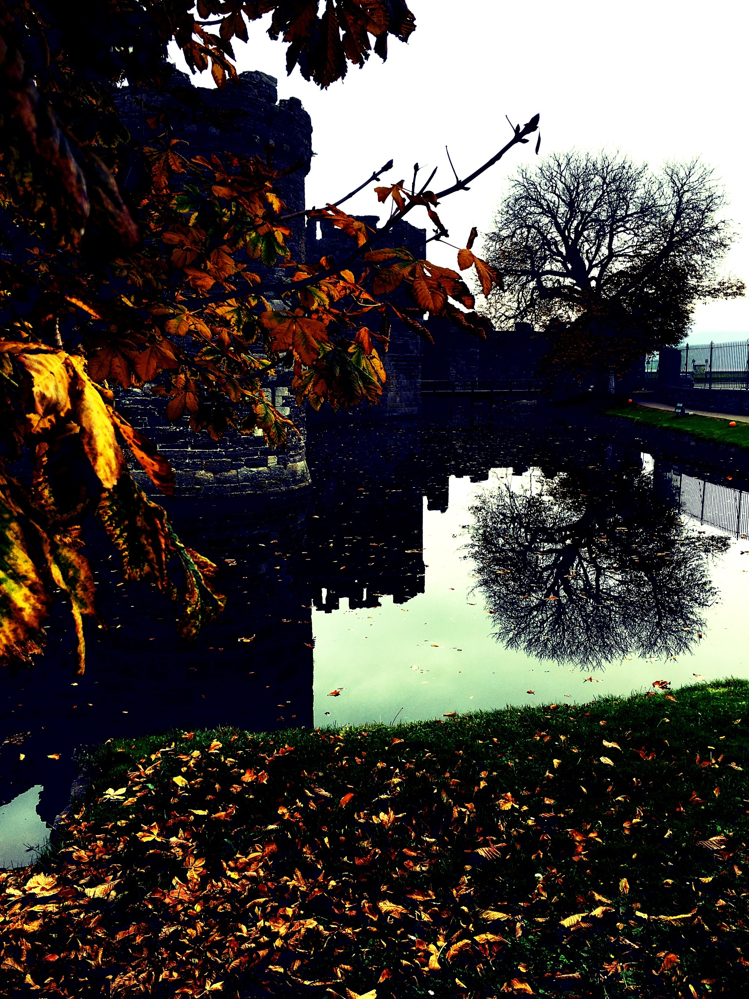 Castle and tree reflection by Paul Stobbs