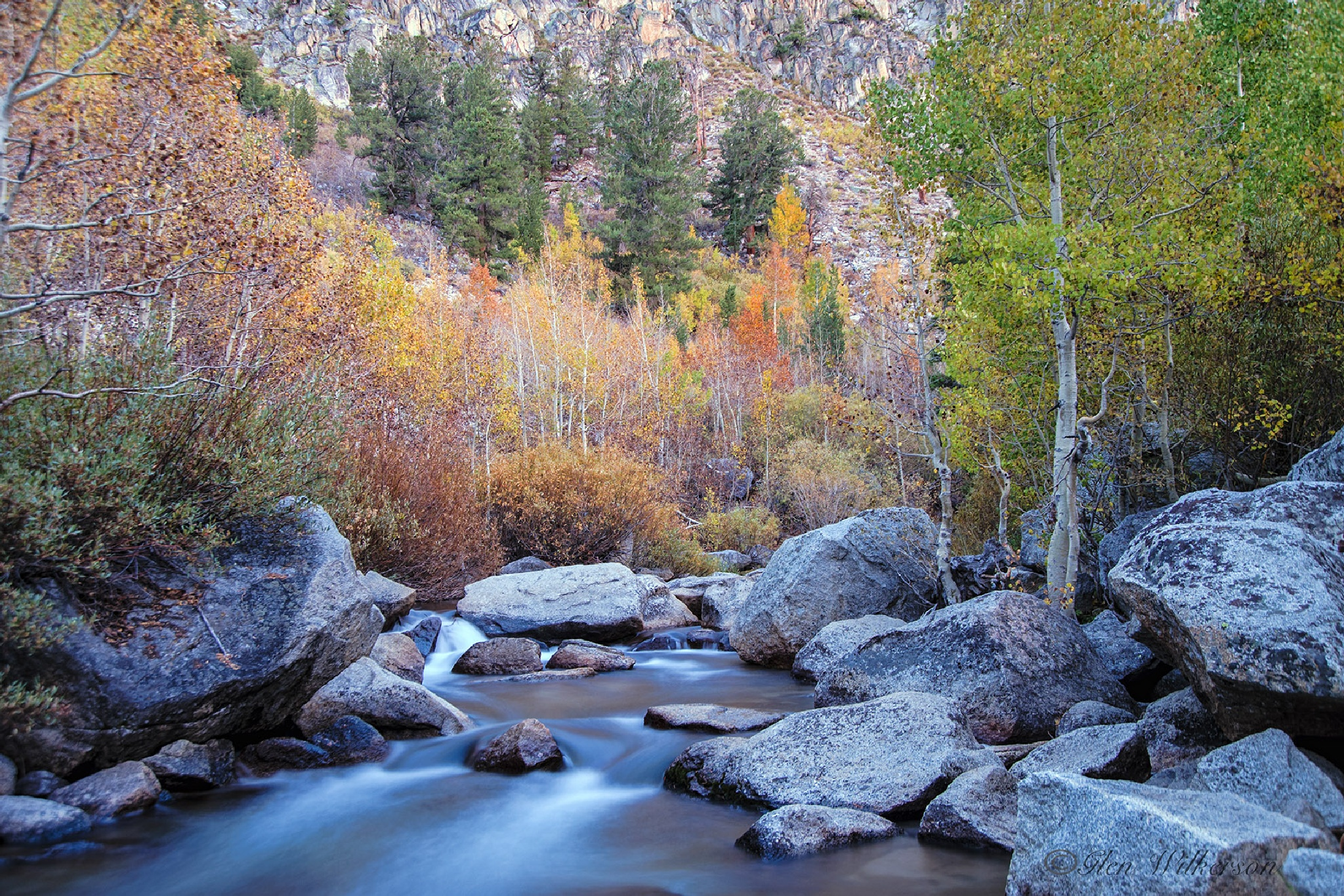 Fall Color at Silver Creek by Glen Wilkerson