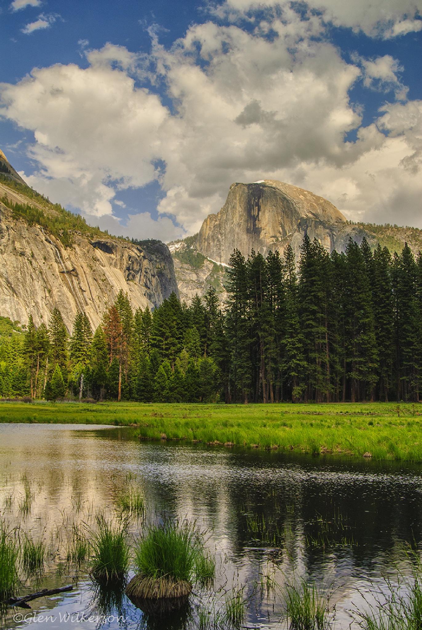Yosemite Spring by Glen Wilkerson
