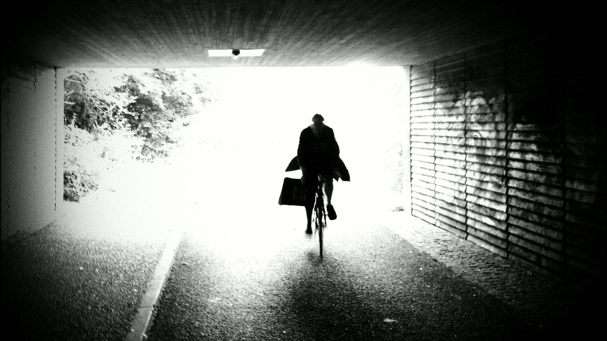 bike by Terry Dunn
