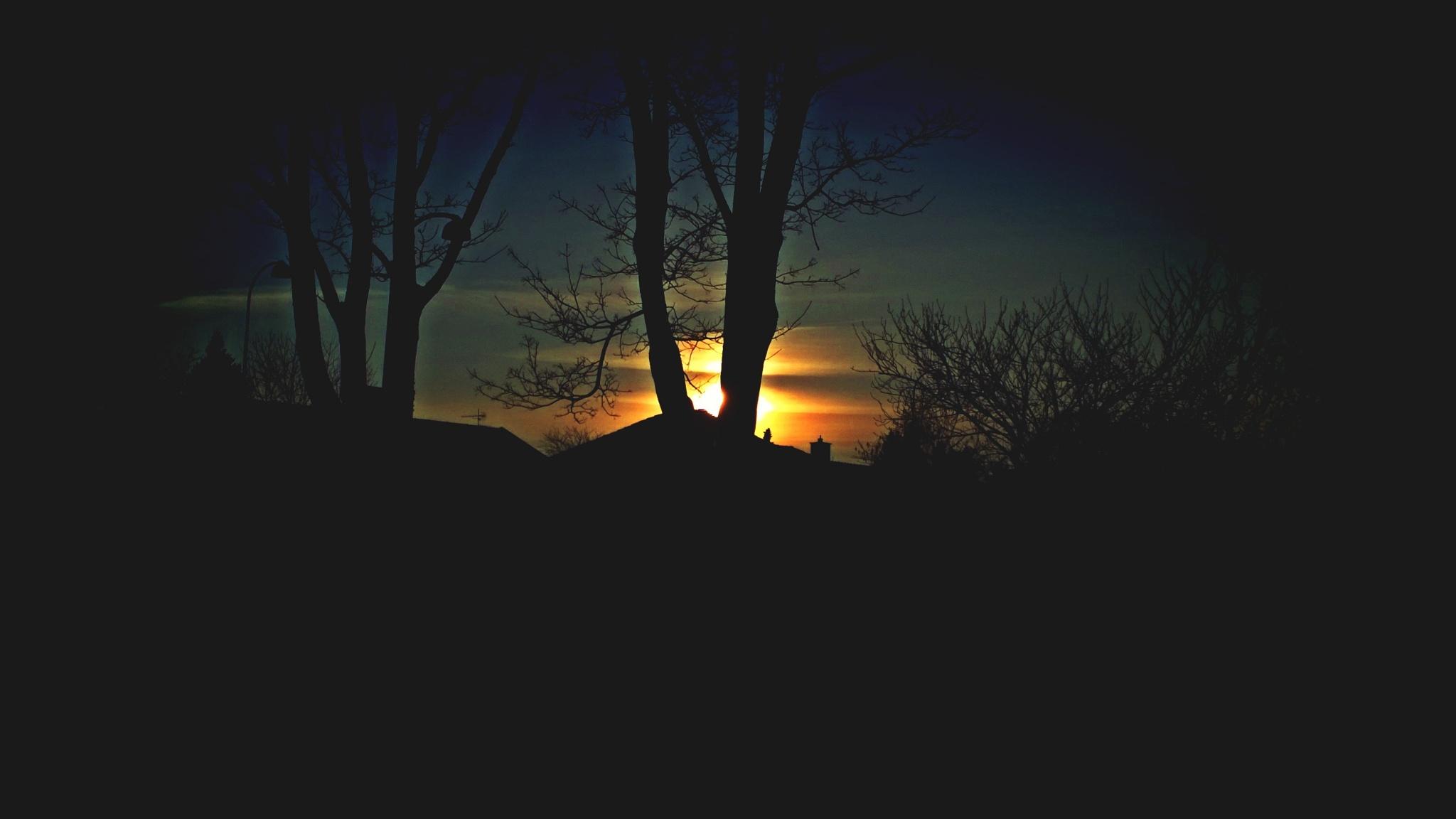 sun hiding  by Terry Dunn