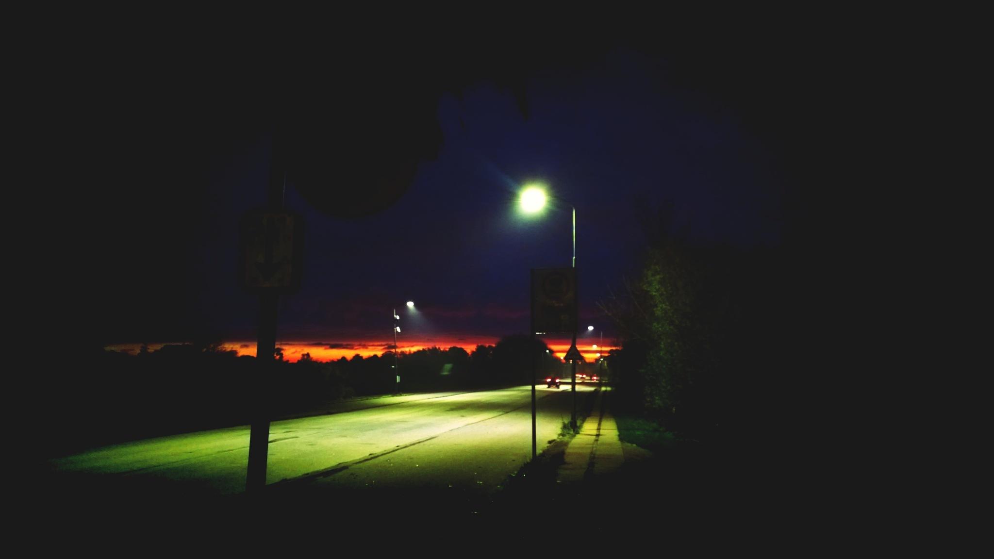 morning walk by Terry Dunn