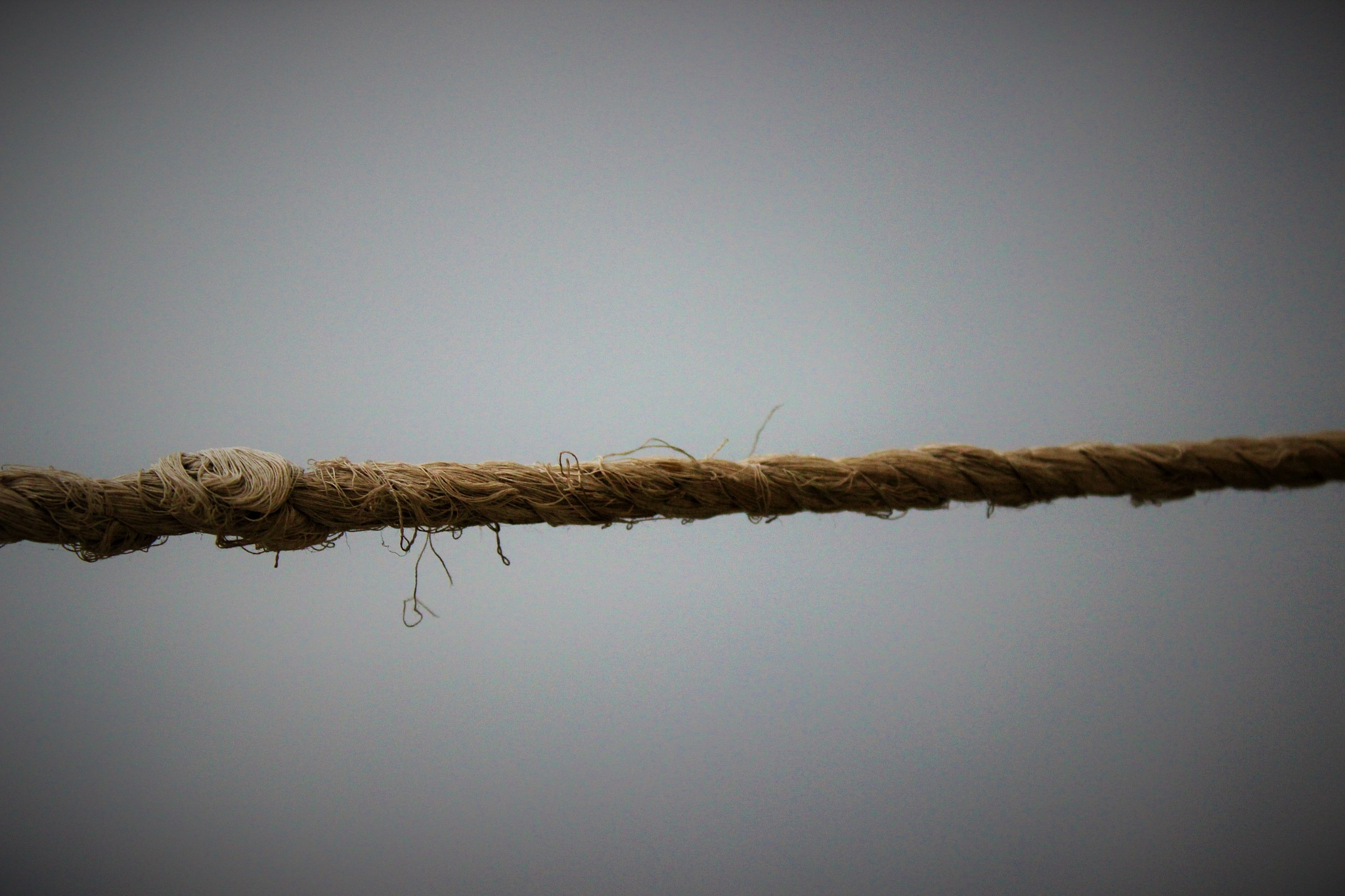 wet rope by Humyun Khan