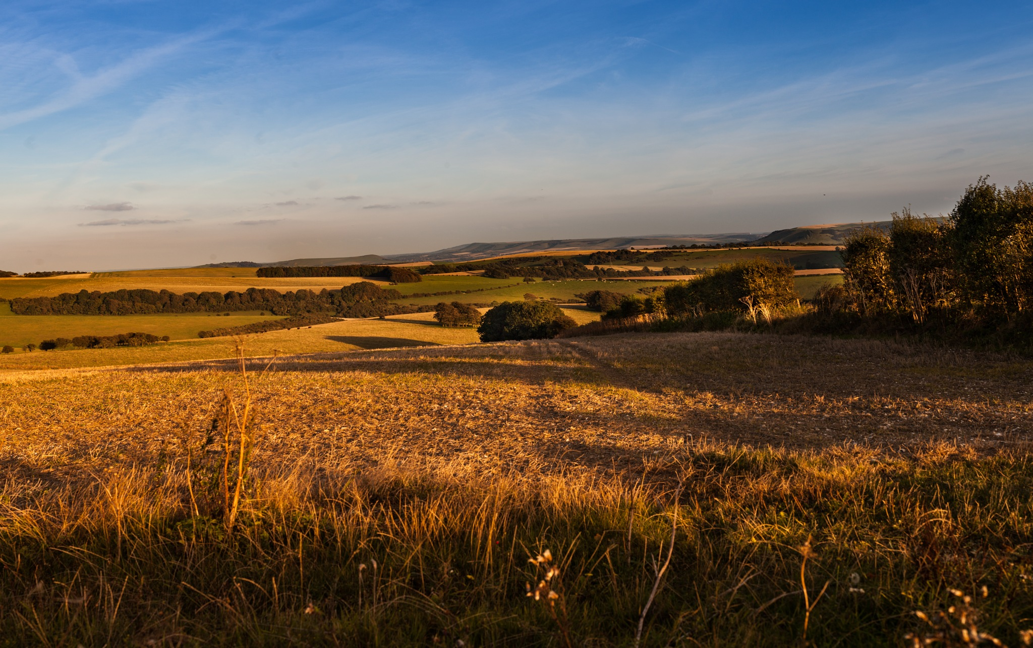 The  Sussex Downs Golden Hour  by Barry