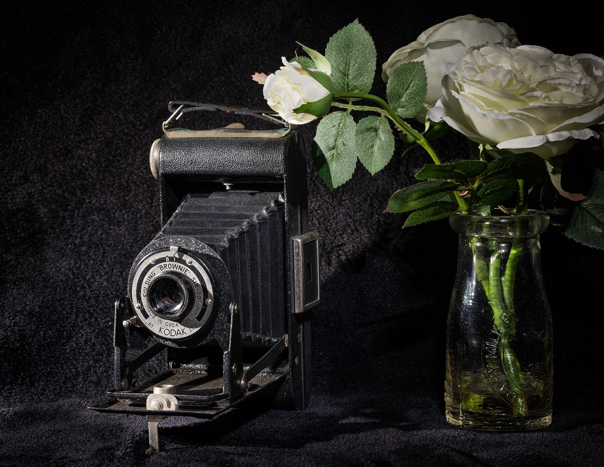 Kodak Folding Brownie Camara by Barry