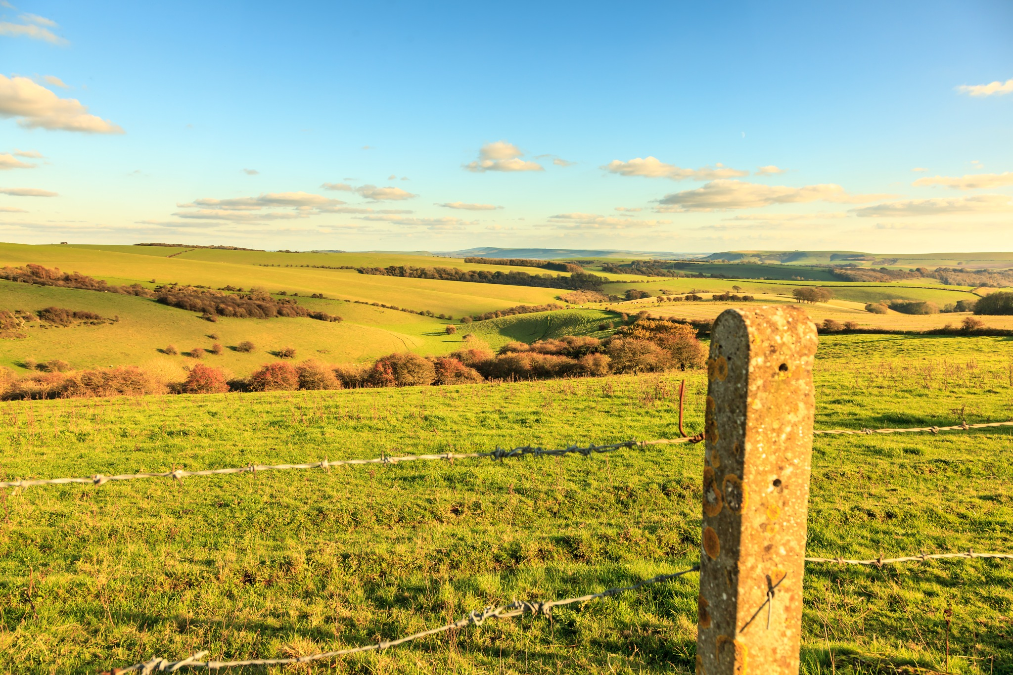 Sussex Downs by Barry
