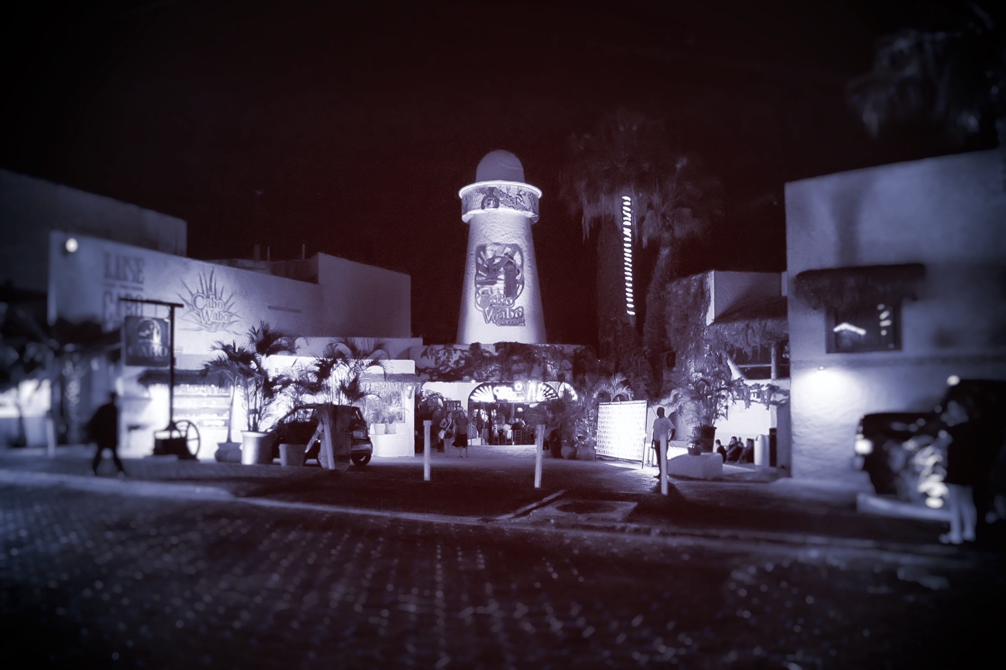 Cabo Wabo Night Vision by Scott Hryciuk