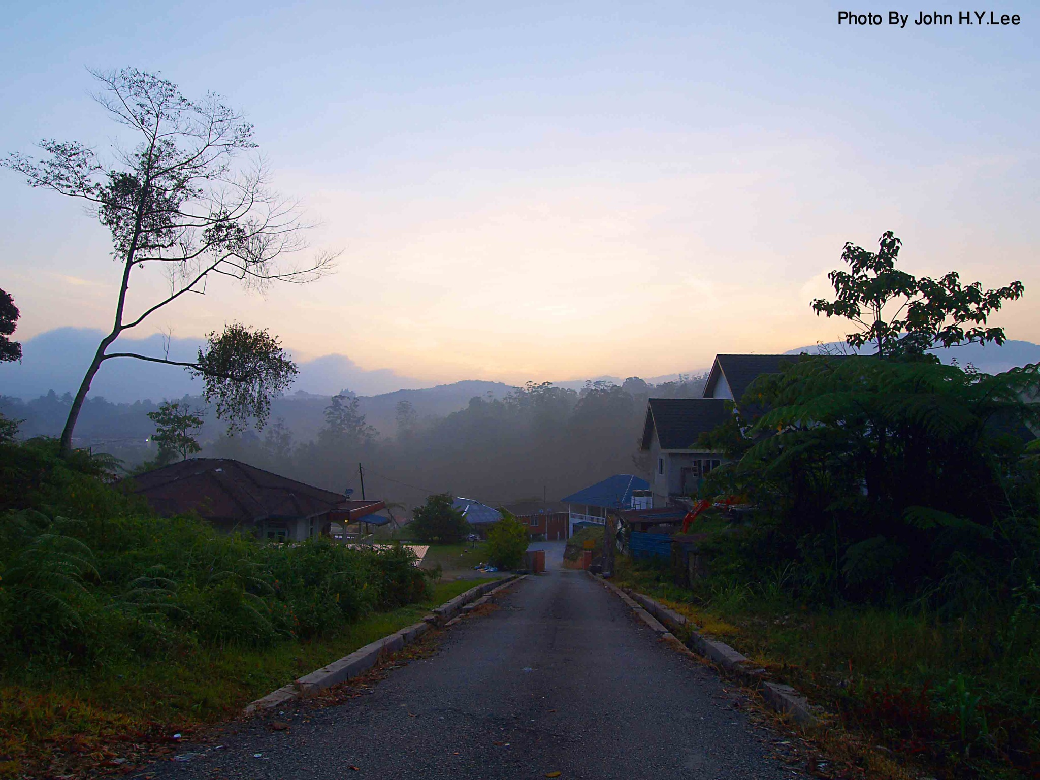 Peaceful Morning by John H.Y.Lee