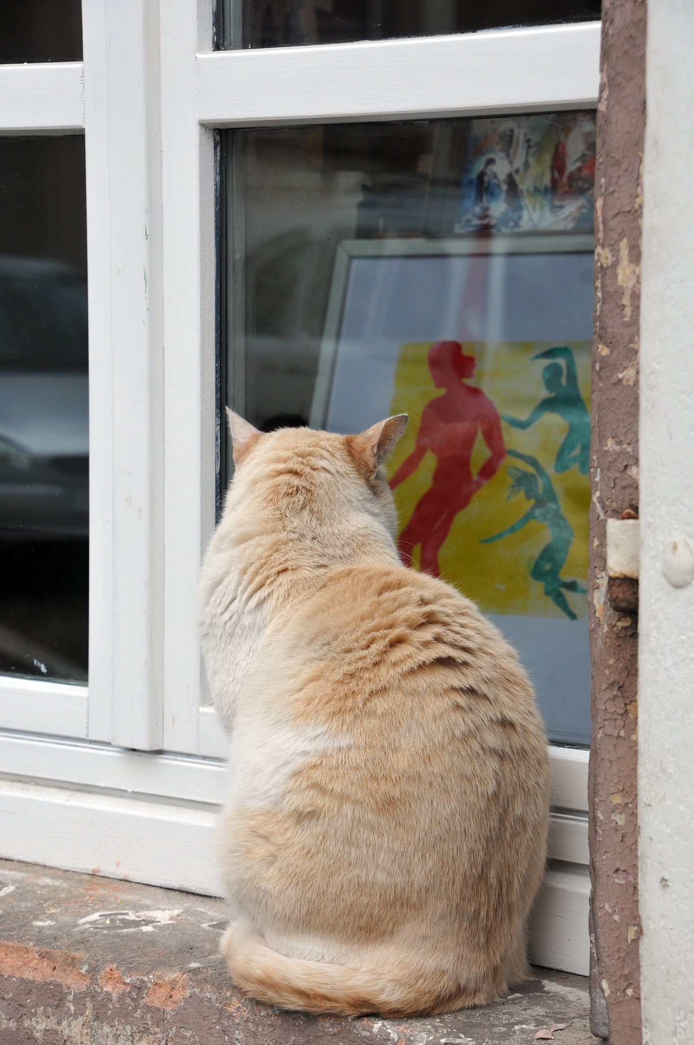 Art lover cat by JeanGregoireMarin