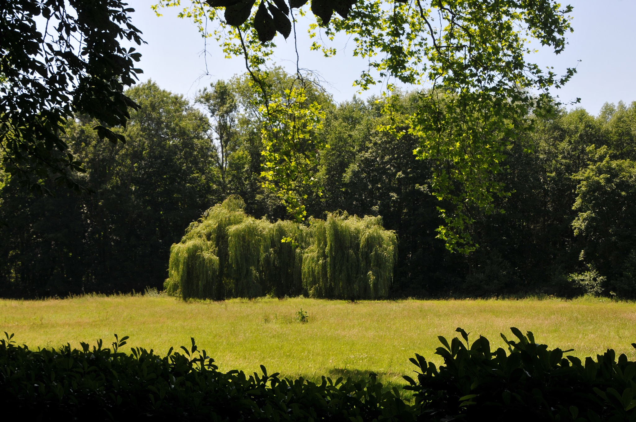 Le Grand Jardin by JeanGregoireMarin