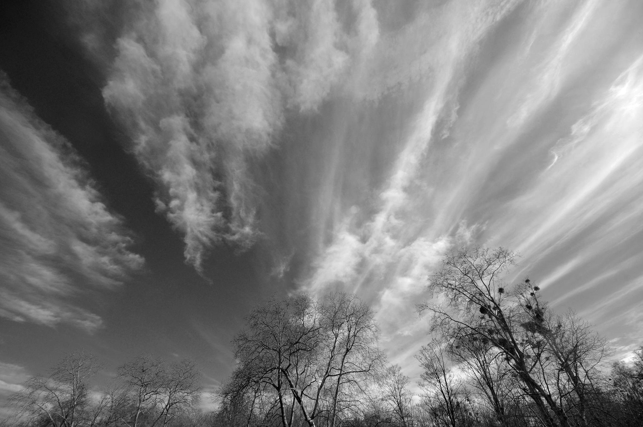 Ciel de traine by JeanGregoireMarin