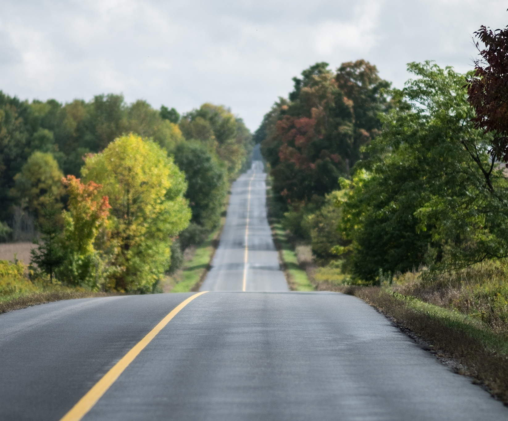 Sometimes you just want to drive down a quiet country road to nowhere.  by Darren Humphries