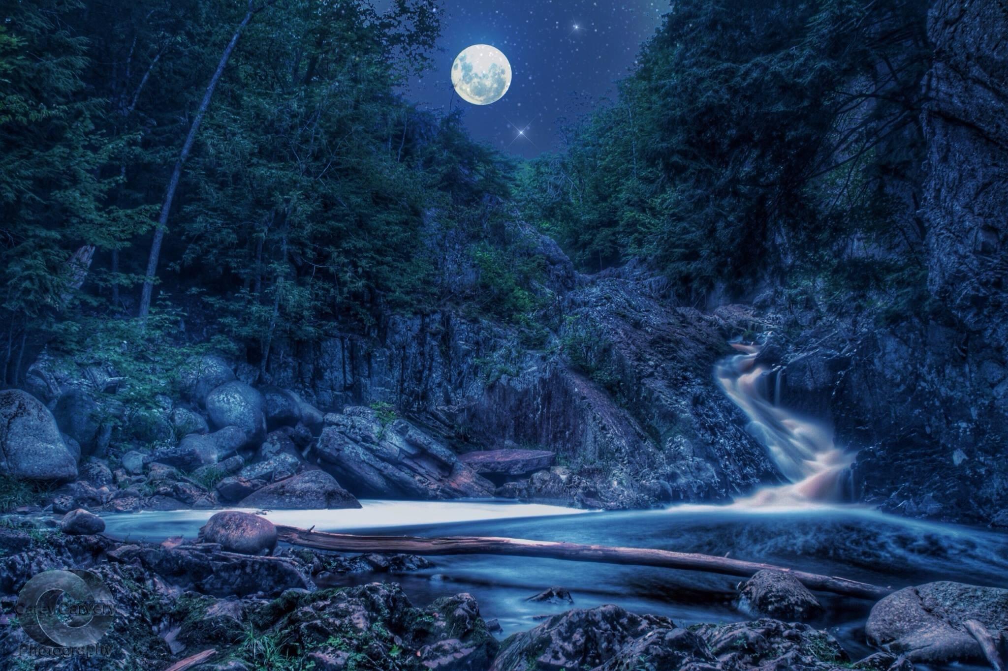 Nova Scotia by night by Carey Carvery