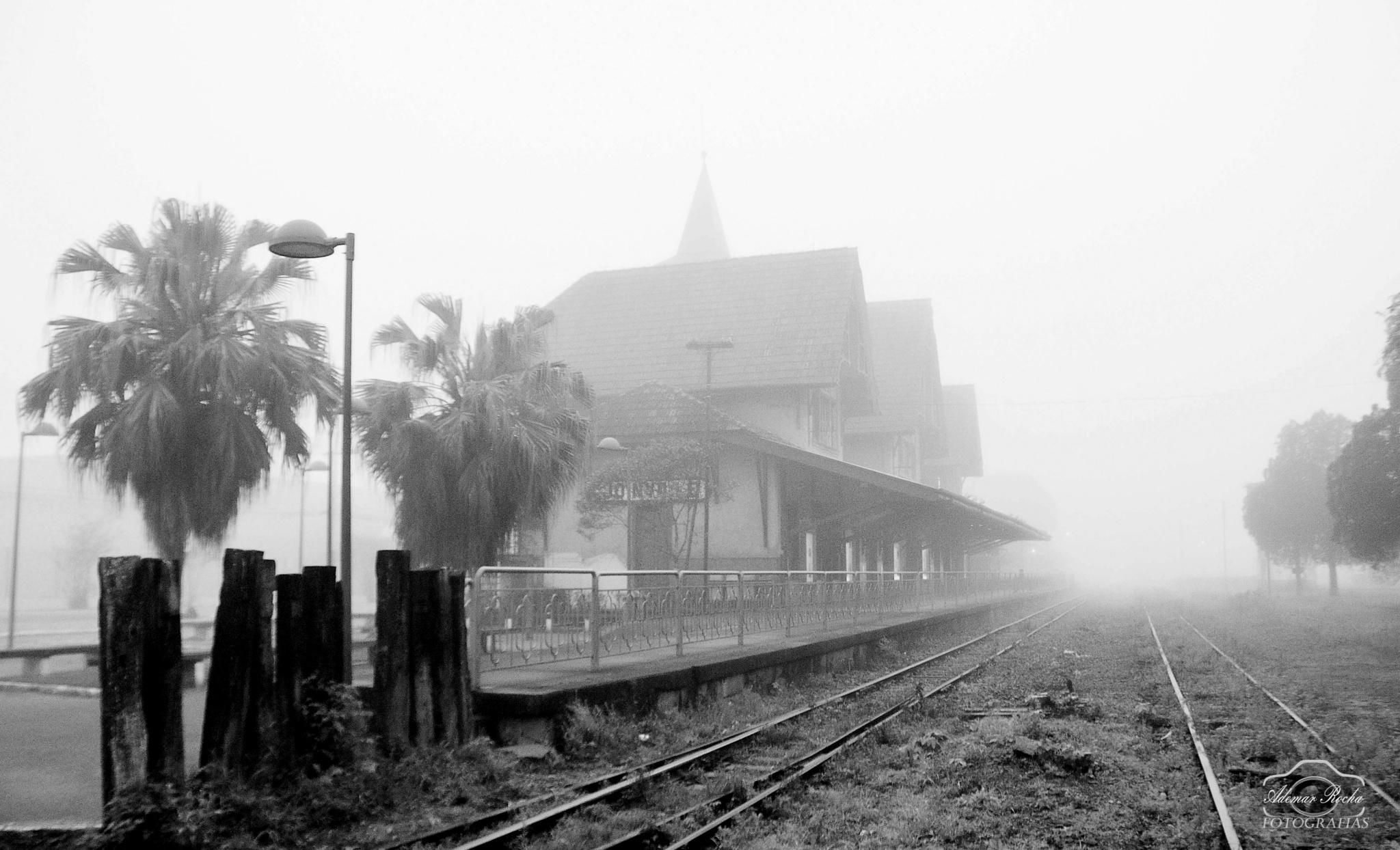 Estação Ferroviária  by Adhemar Rocha