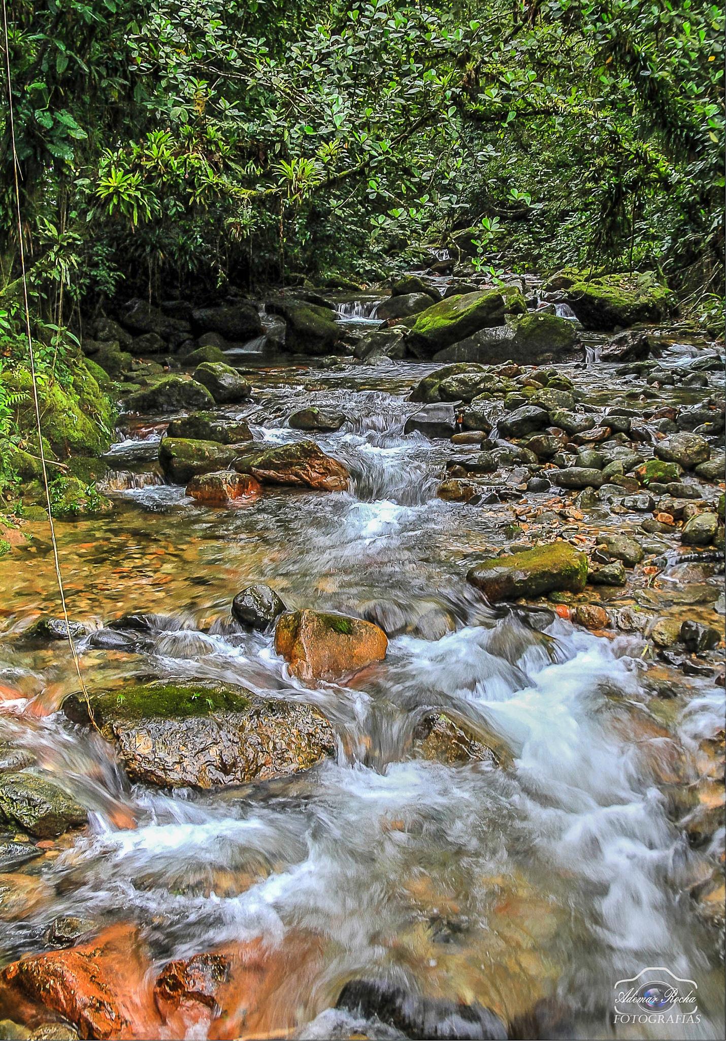 Cachoeira  by Adhemar Rocha