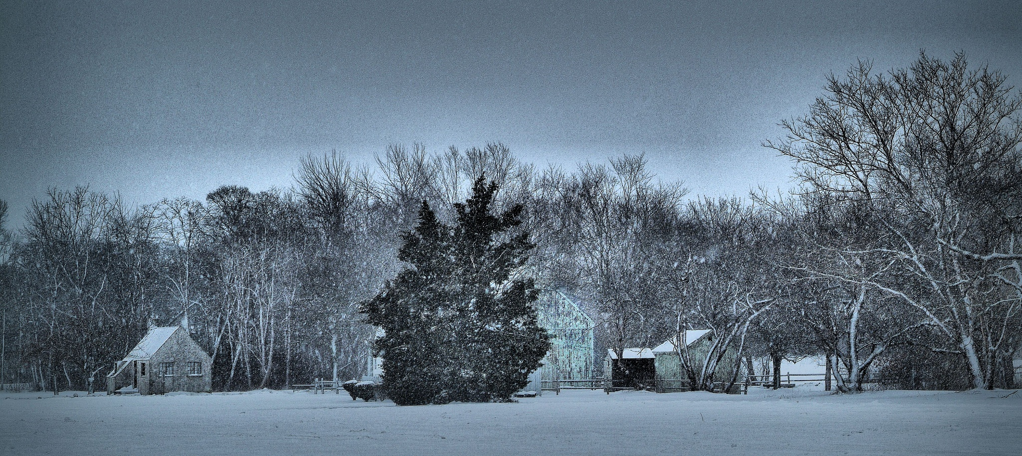 Snowy Homestead too... by C michael anthony