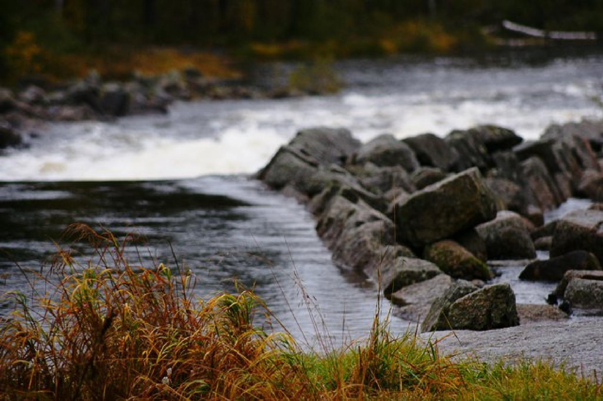 Autumn  by Jonas Ek