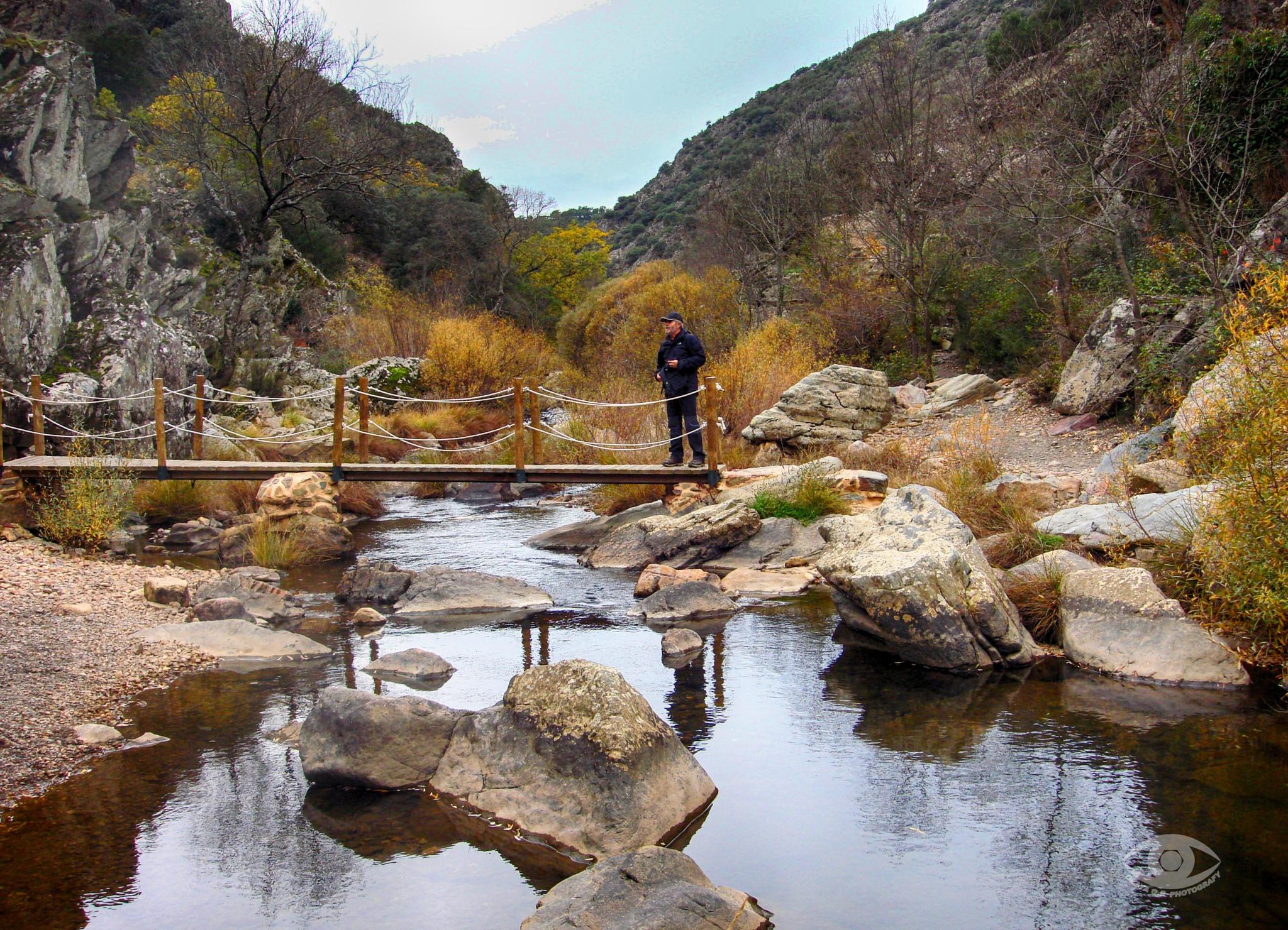 Cabañeros National Park by OLAYA