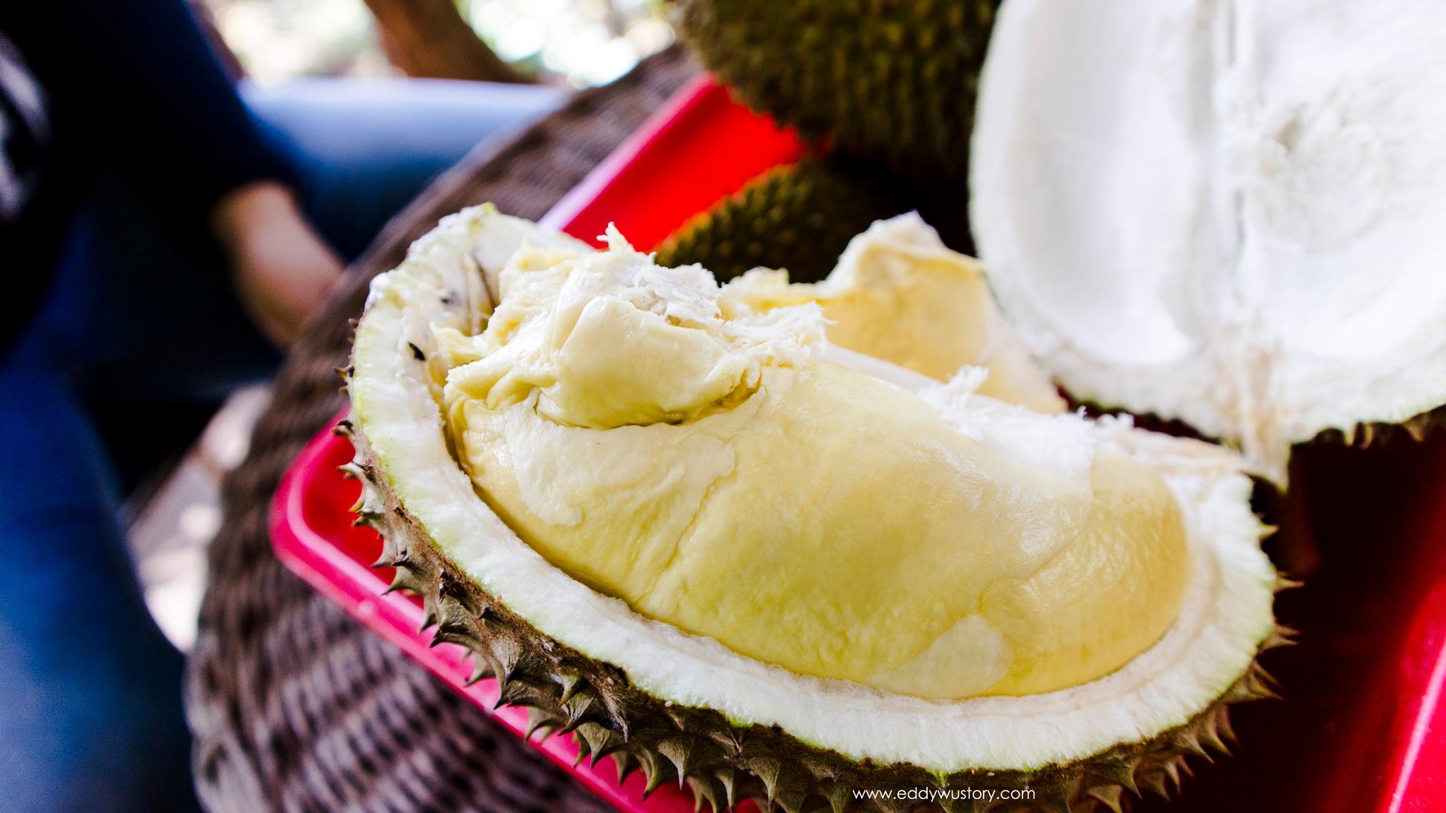 Durian H.Djuhari by Eddy WU