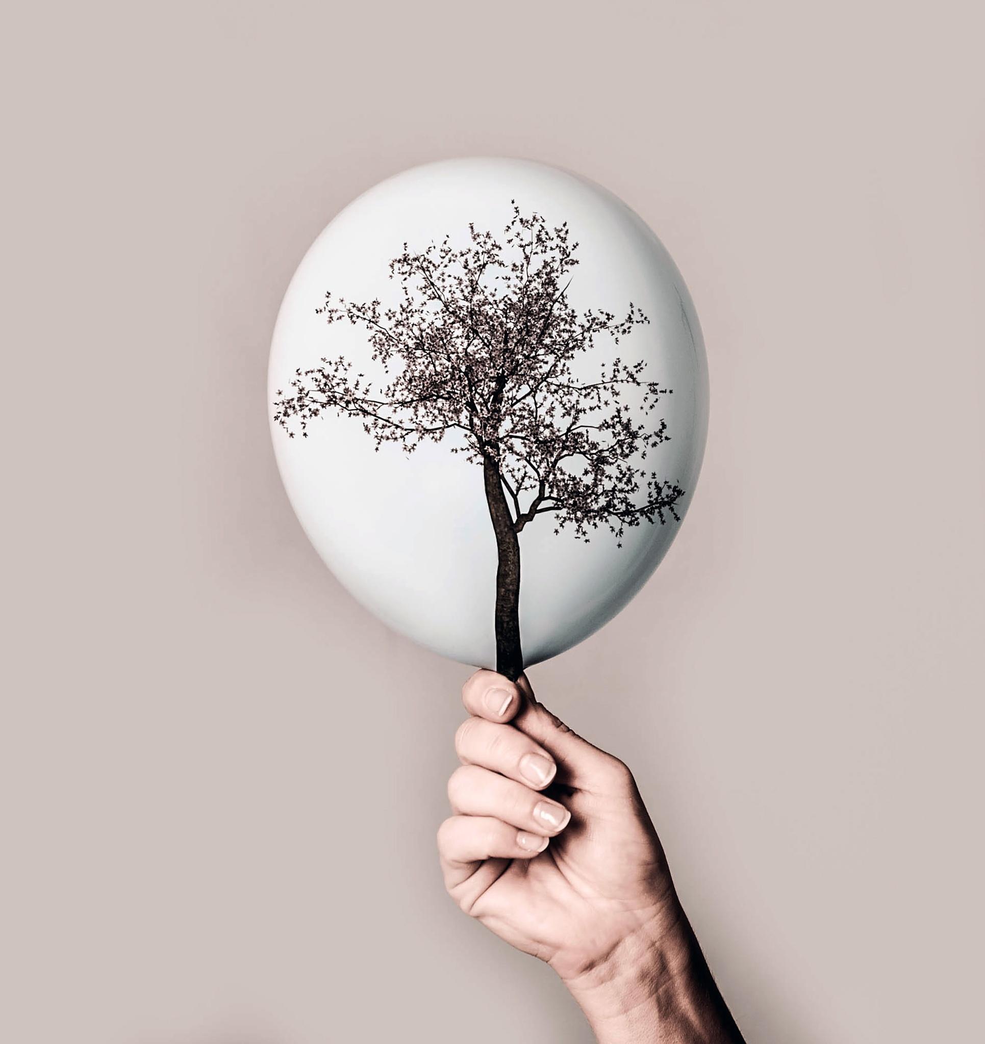Tree of Life by Kristina Alegro