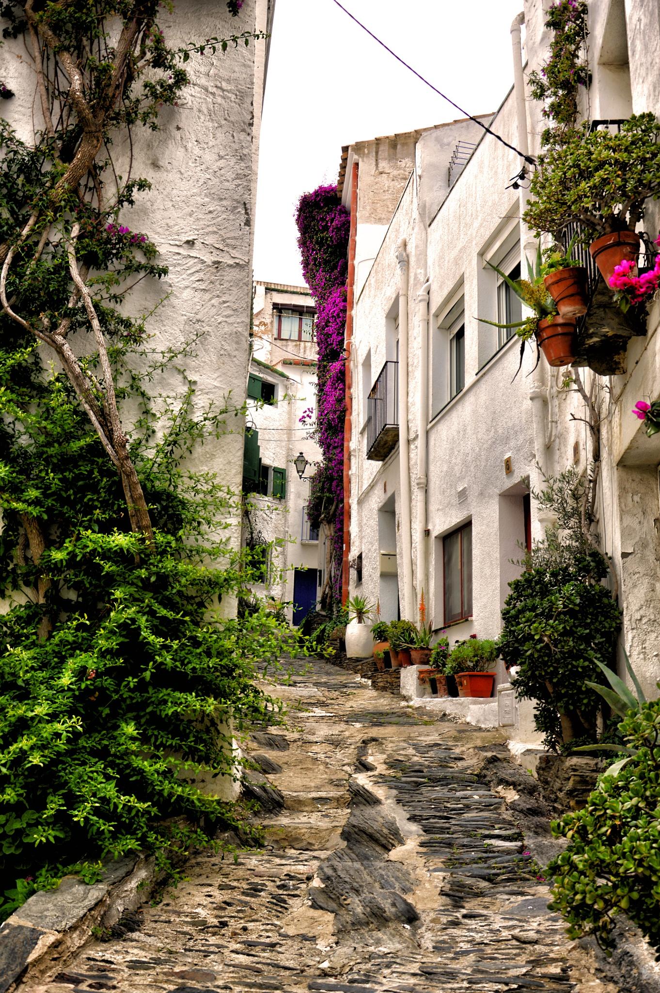 La calle de las flores by Juan Carlos Arranz