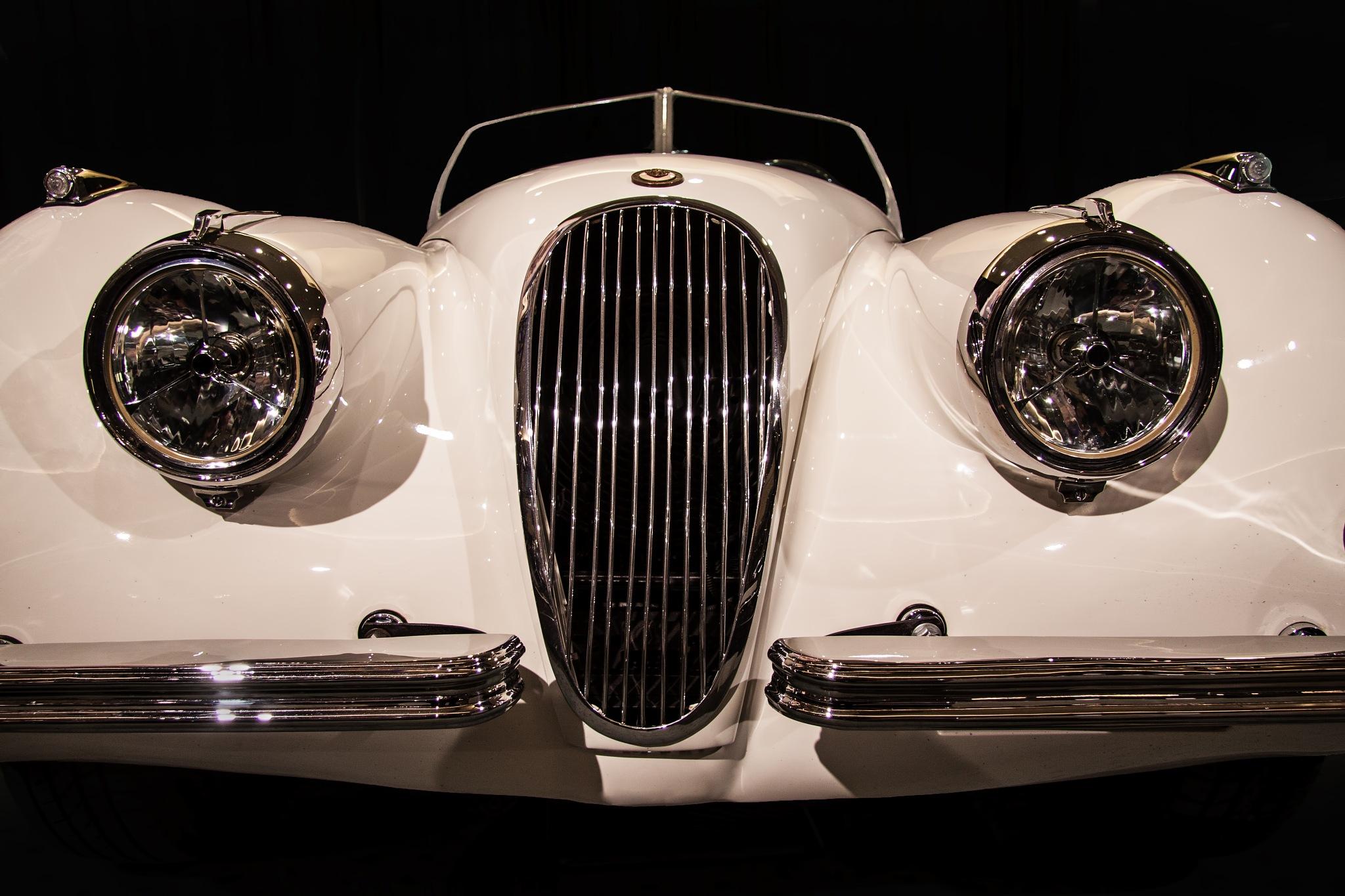 Jaguar by Bobjb