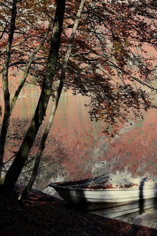 autunno by Lauretta Michelutti