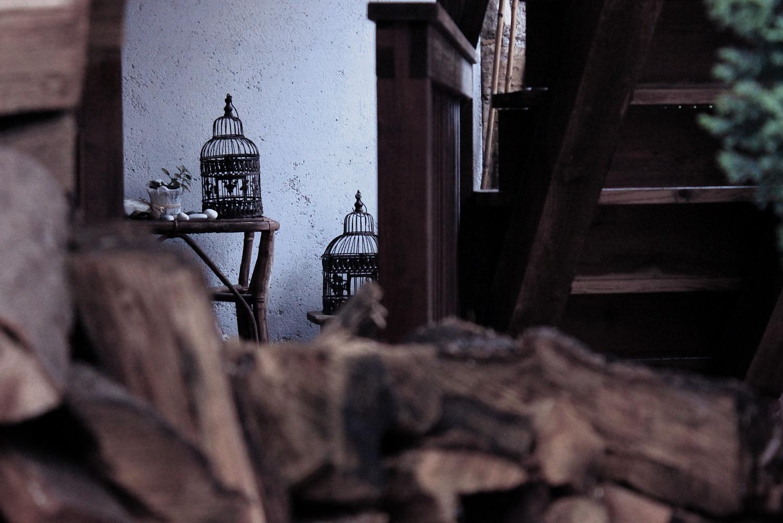 Photo in Nature #legno