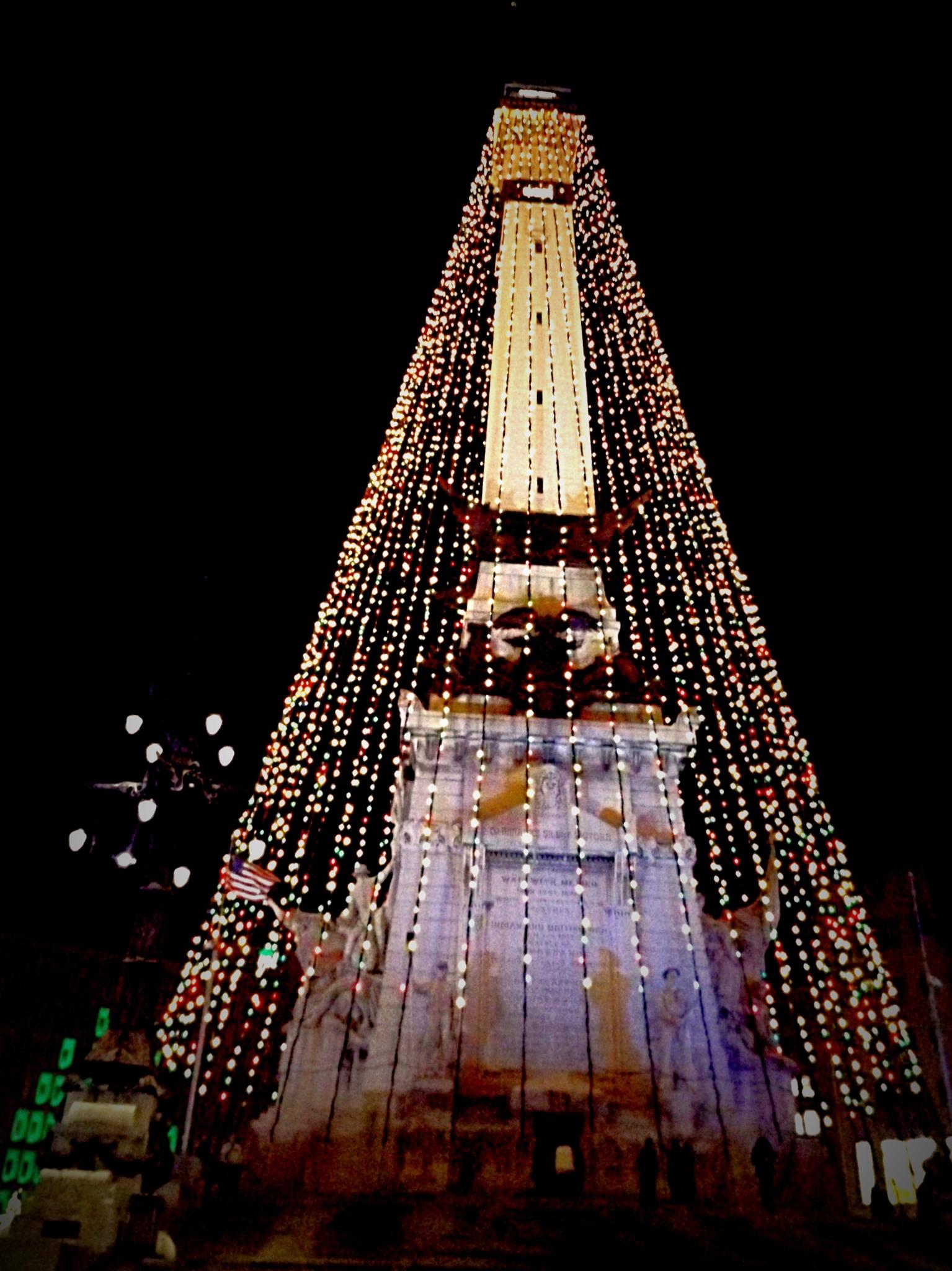 World's Tallest Christmas Tree by Tammy Warner Hood