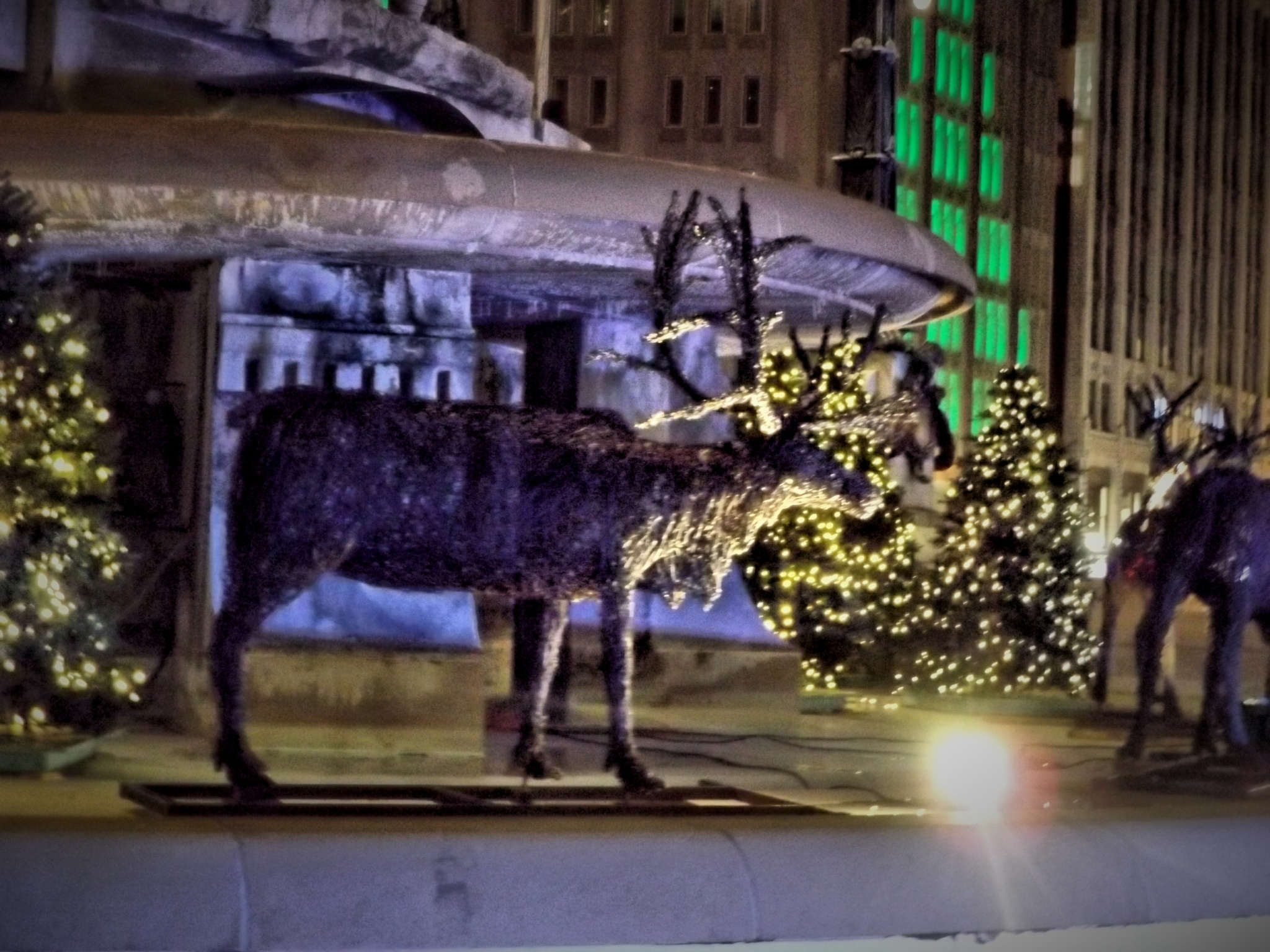 Downtown Reindeer by Tammy Warner Hood