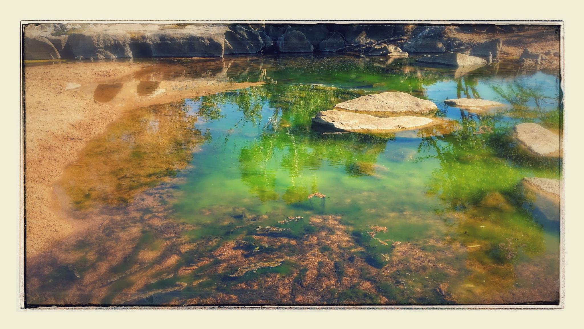 Green Slime by kiwikyla