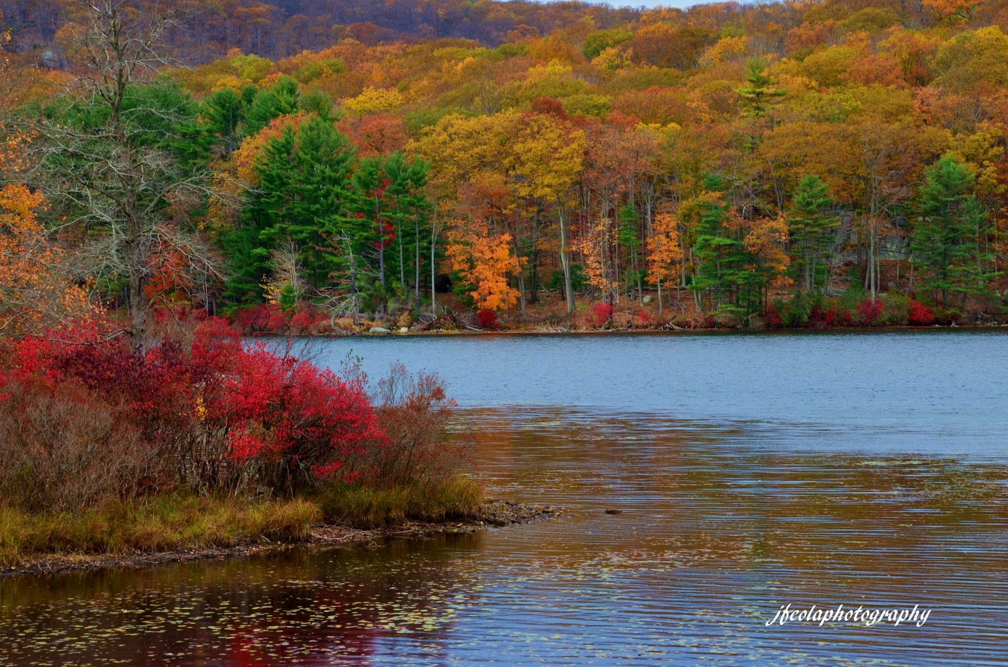 Beautiful Fall Colors by Joseph A Feola