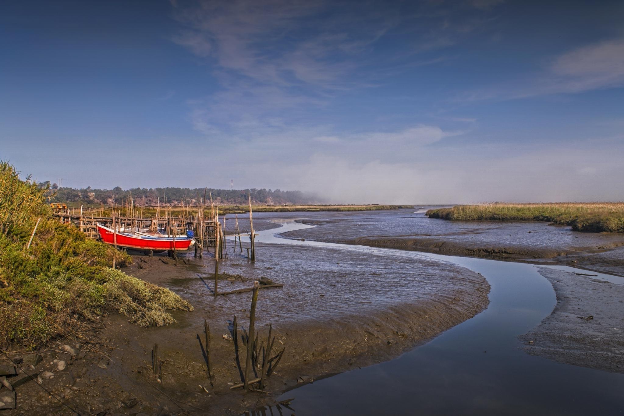 low tide by manimage