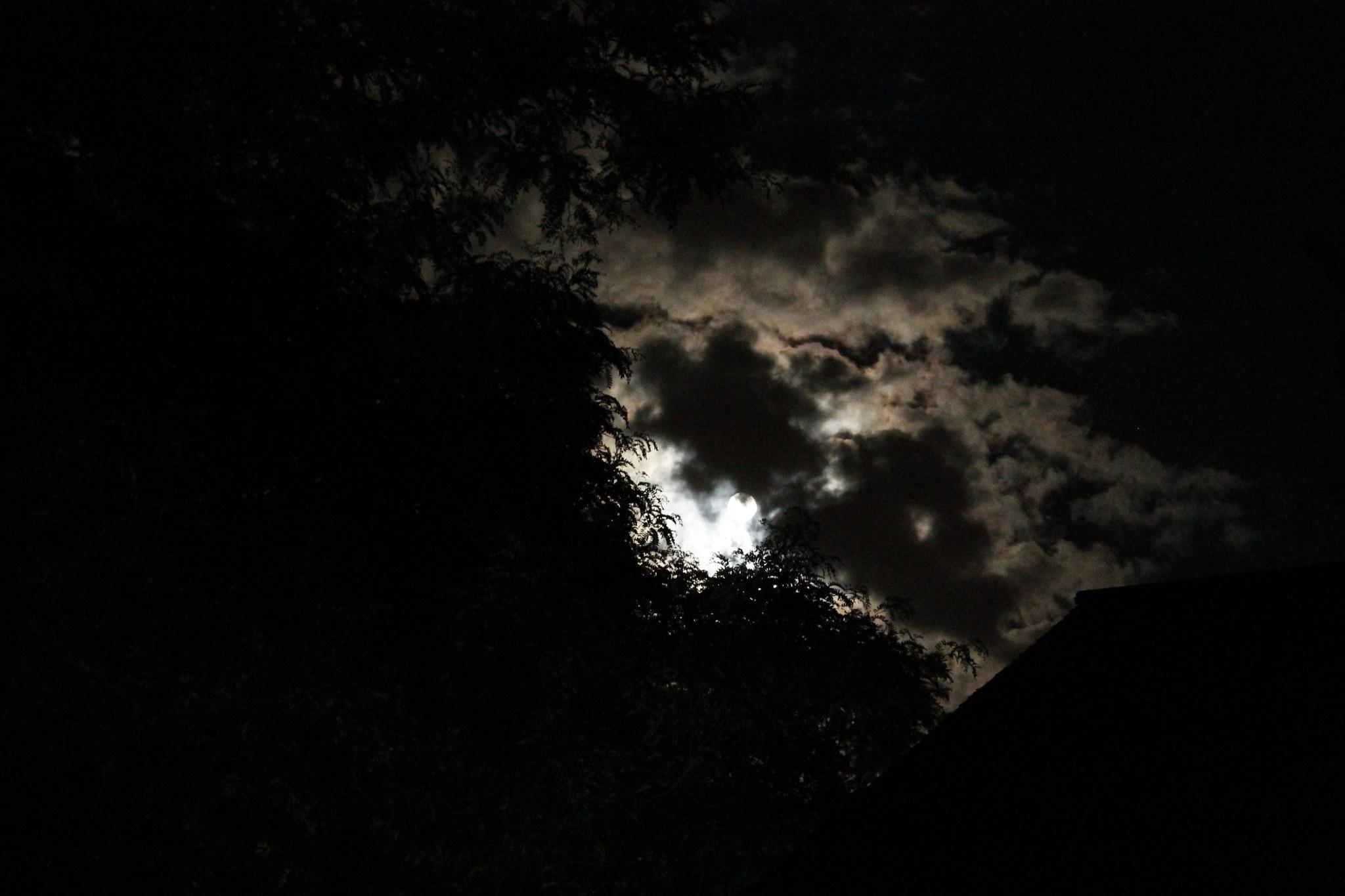 Haunting moon by George Sander