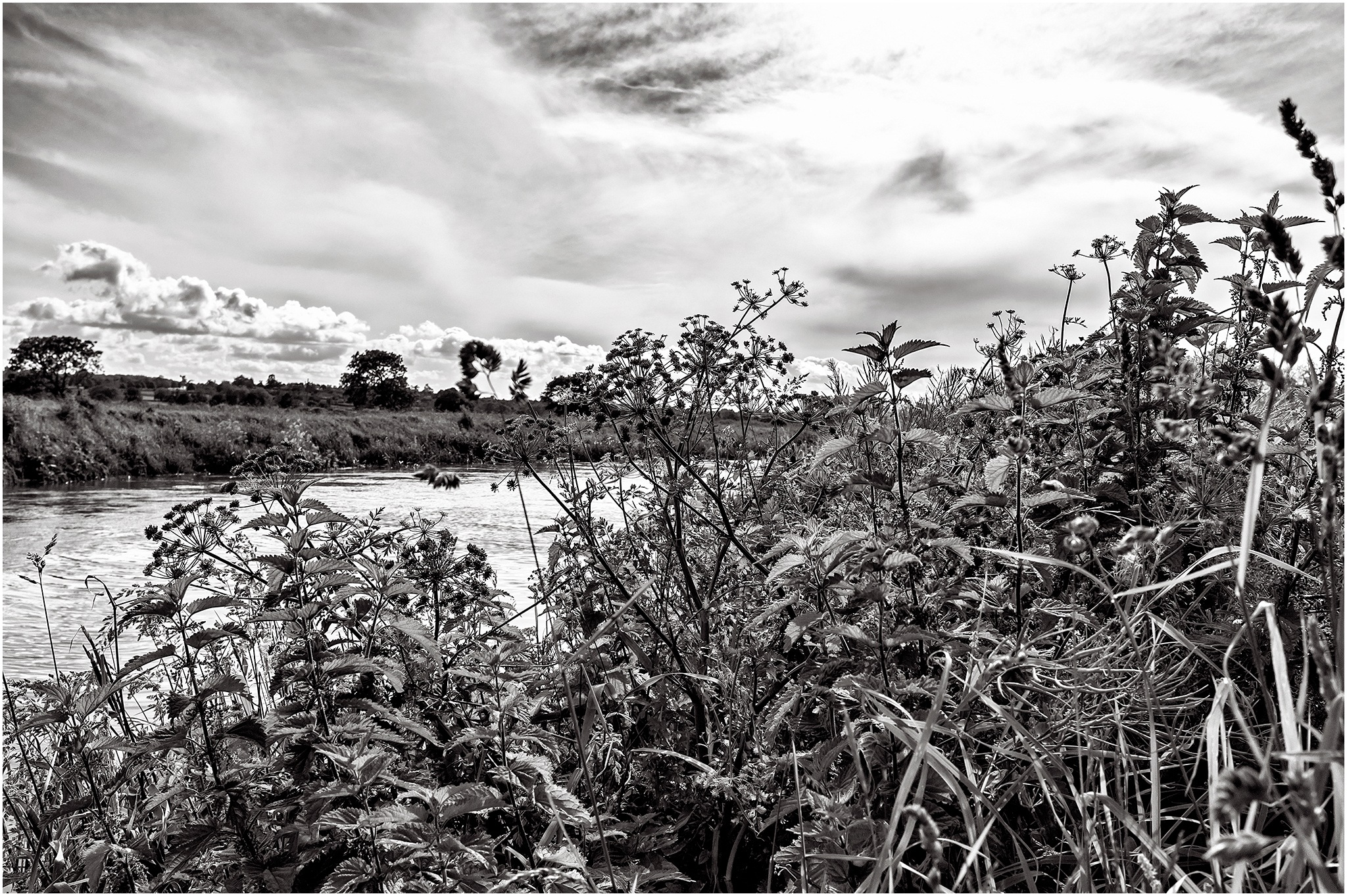 Down by the River - B&W by Clive Ayron