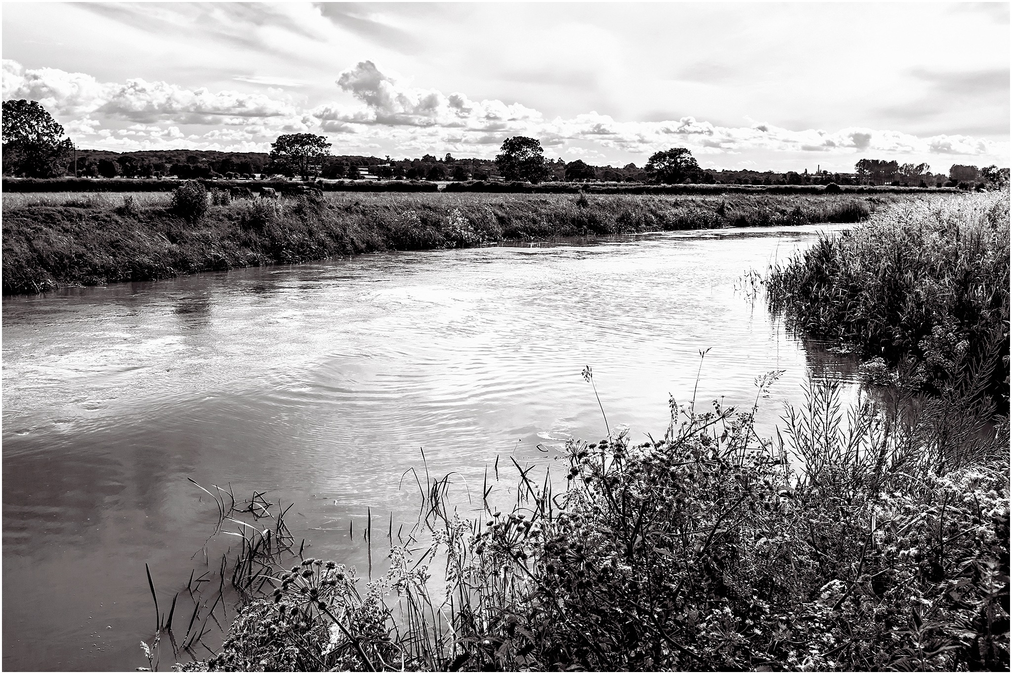 Down by the River - part 2 B&W by Clive Ayron