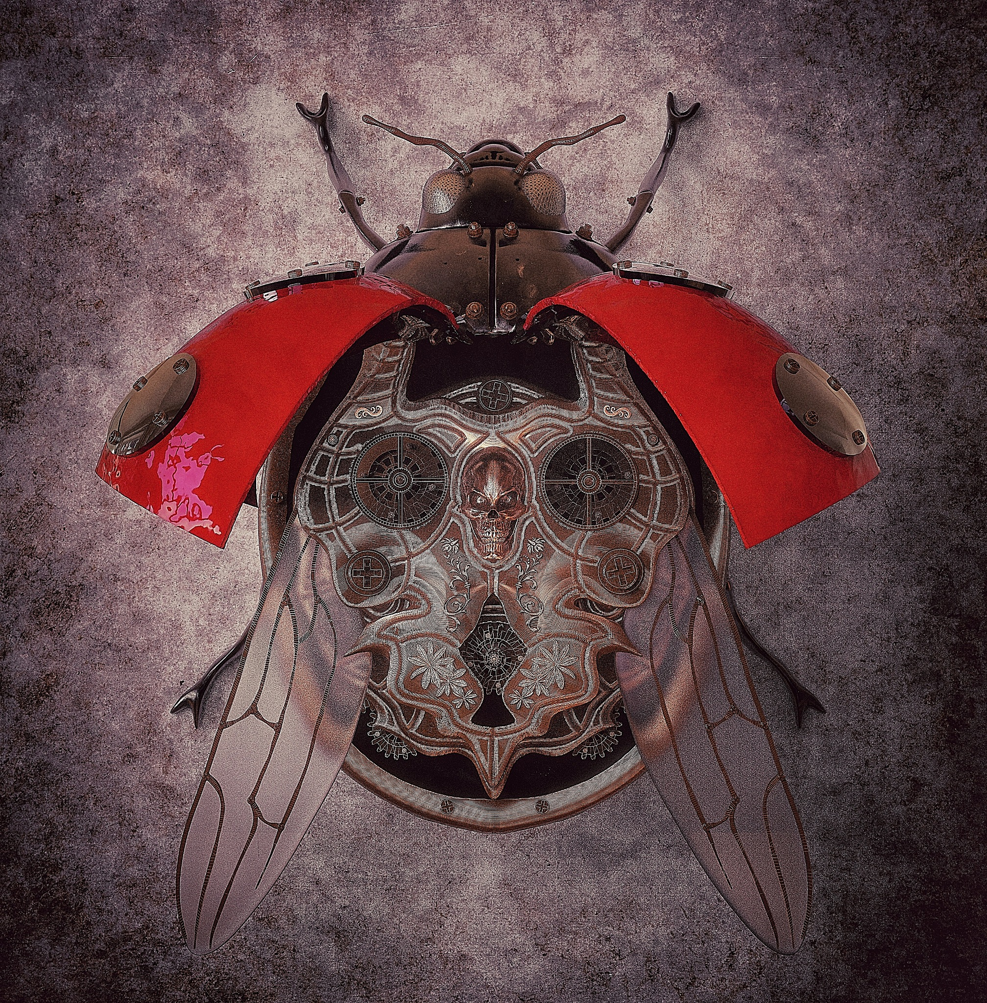 Ladybug by Oliver Kieser