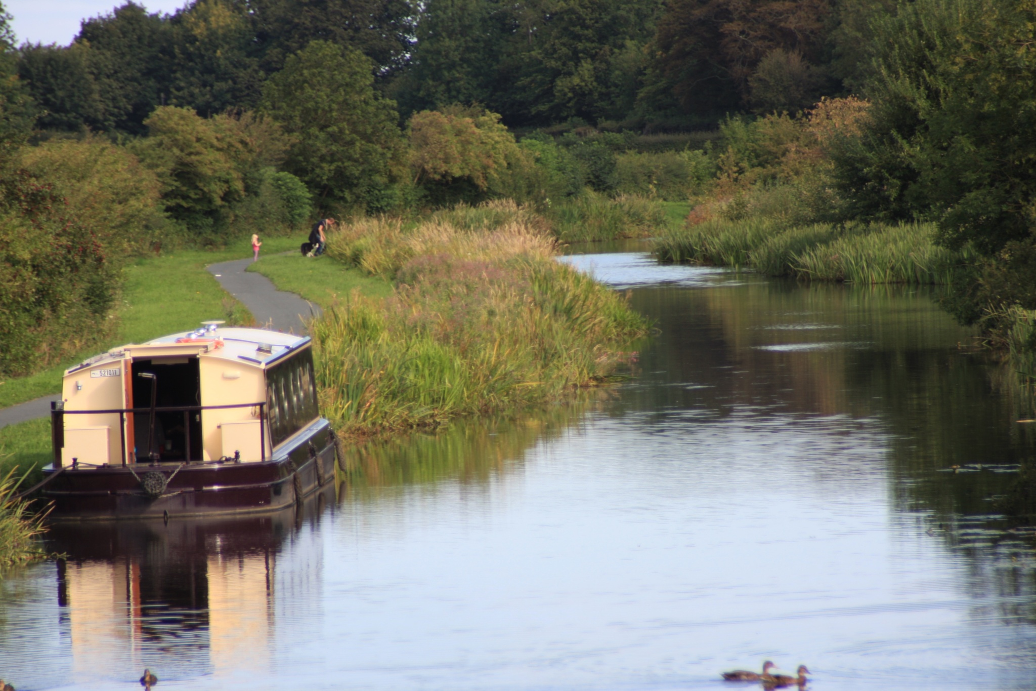 Busy morning on the Canal by Amanda Gardner