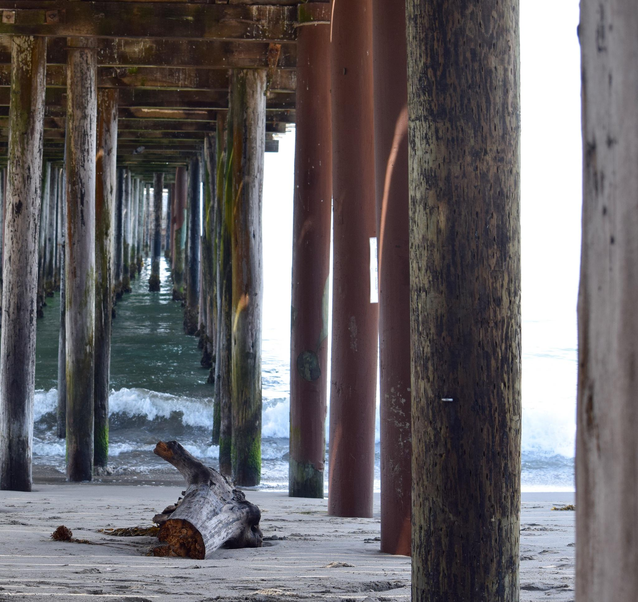 Pier-vision  by CandaceManning